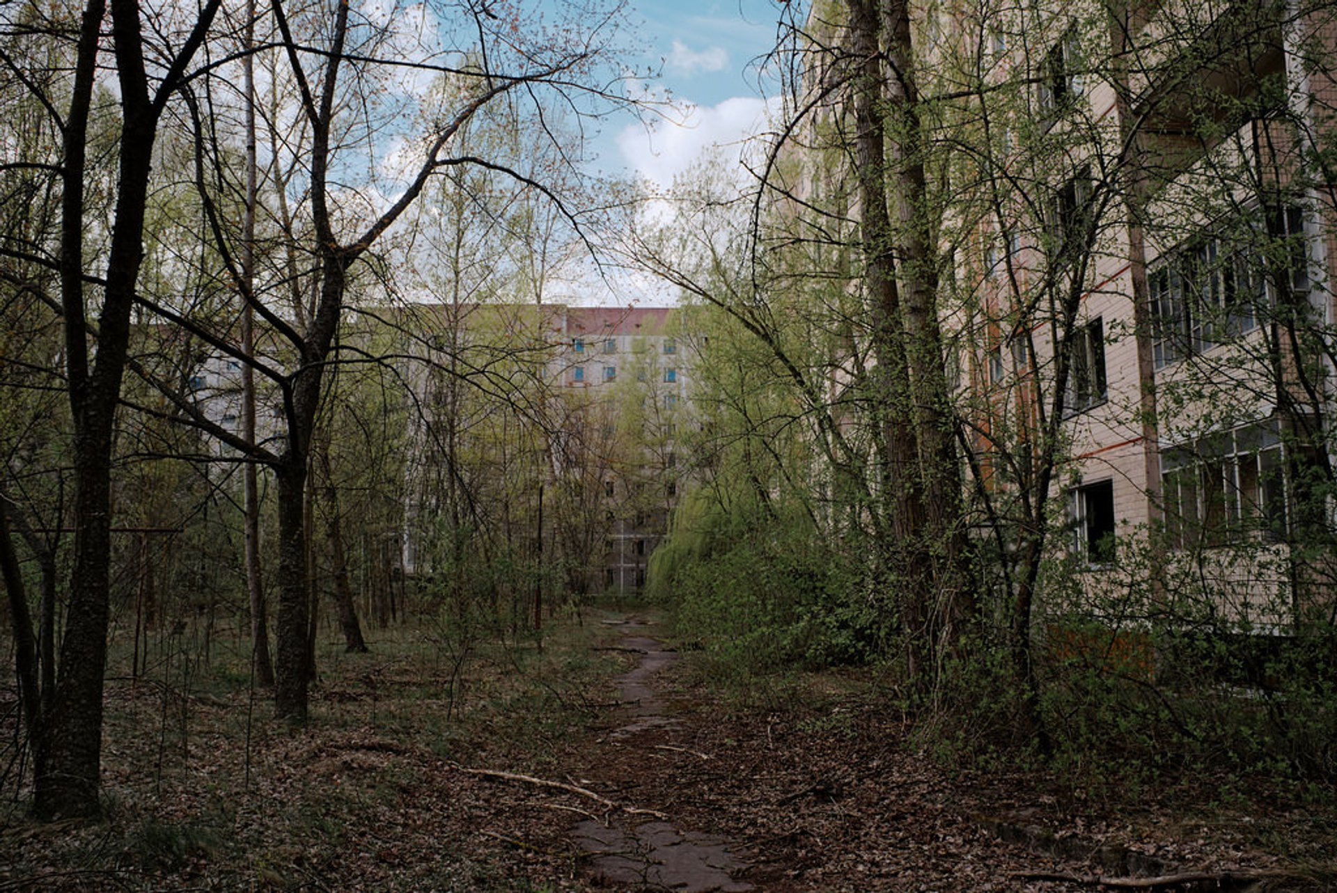 Best time to see Chornobyl 2020