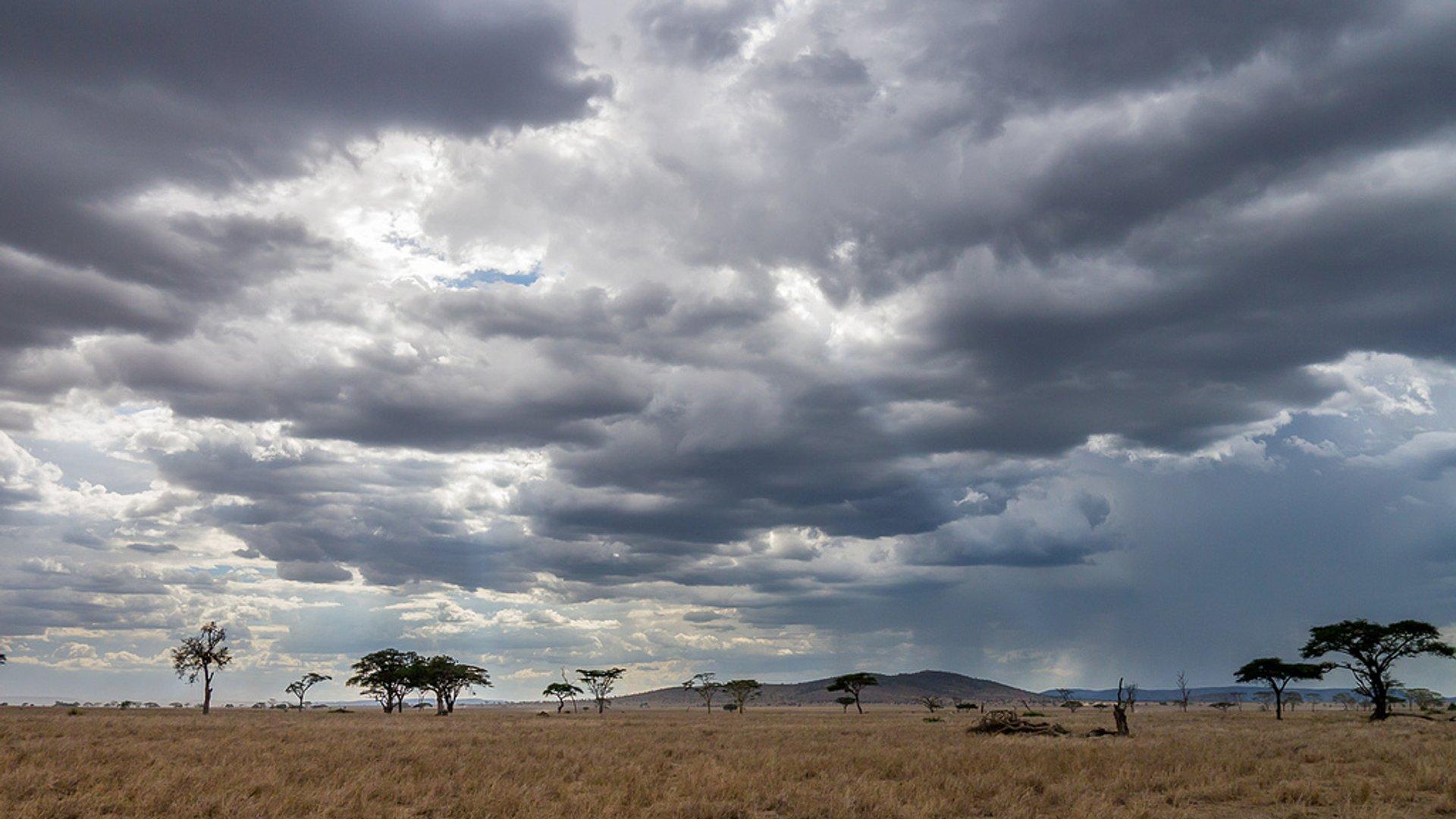 Short Rainy Season in Tanzania - Best Time