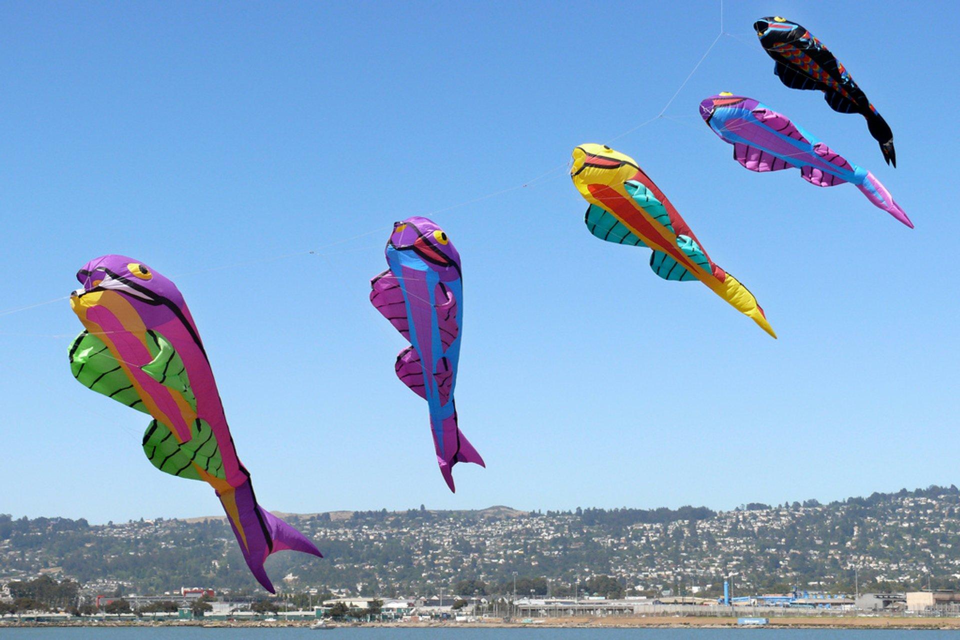 Berkeley Kite Festival in San Francisco - Best Season 2020