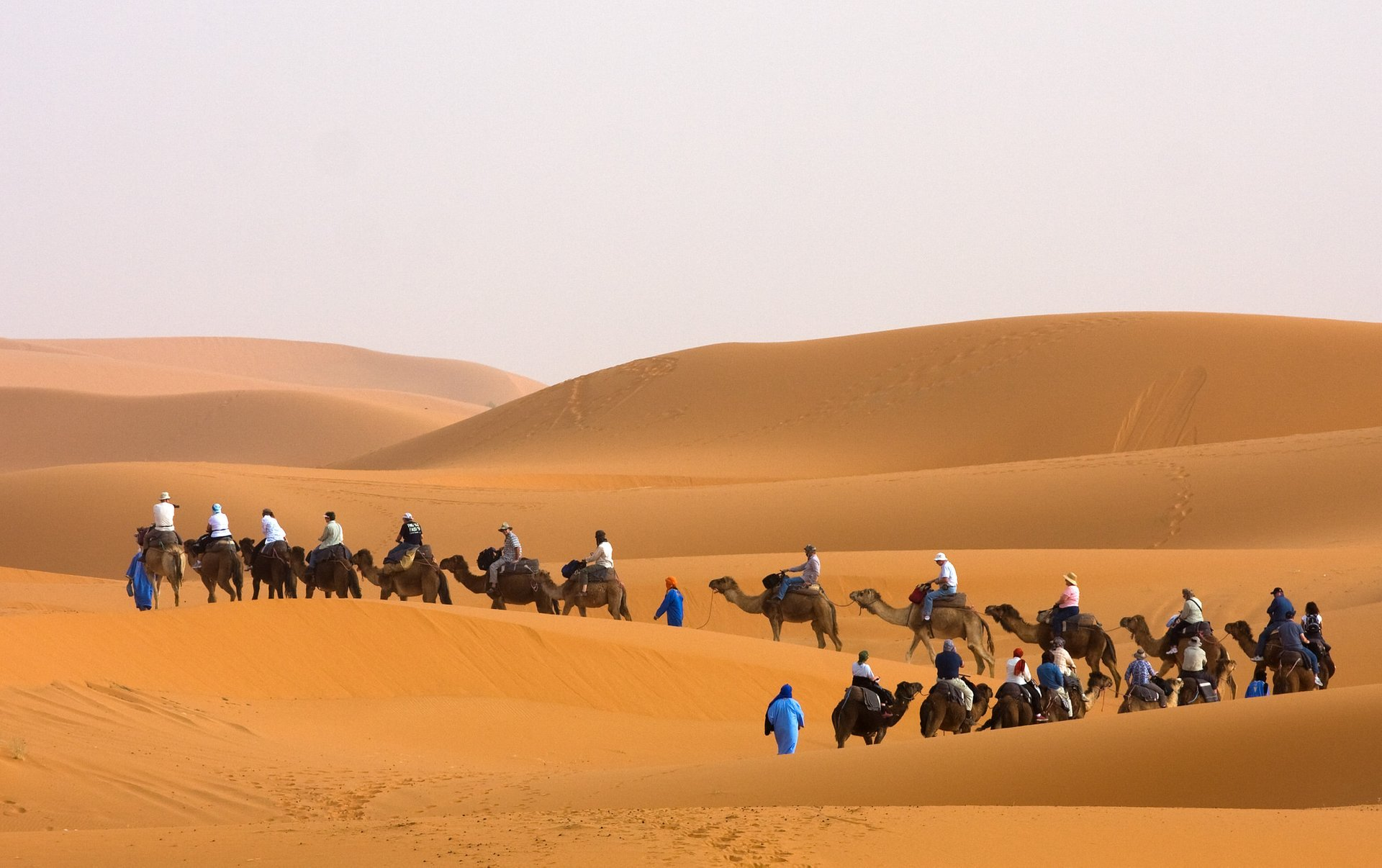 Camel Trekking in Morocco 2020 - Best Time