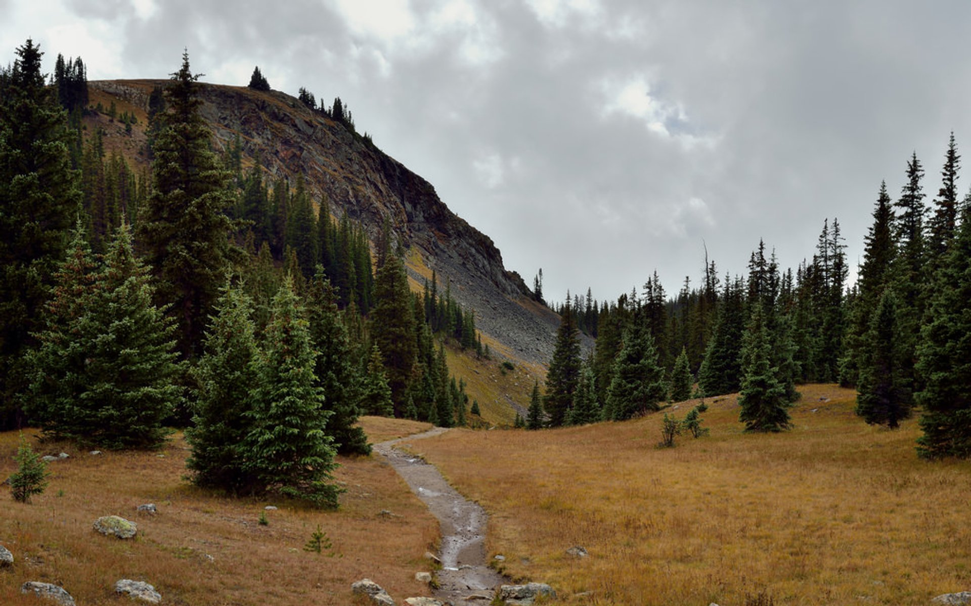 A path just off the Trail Ridge Road 2019