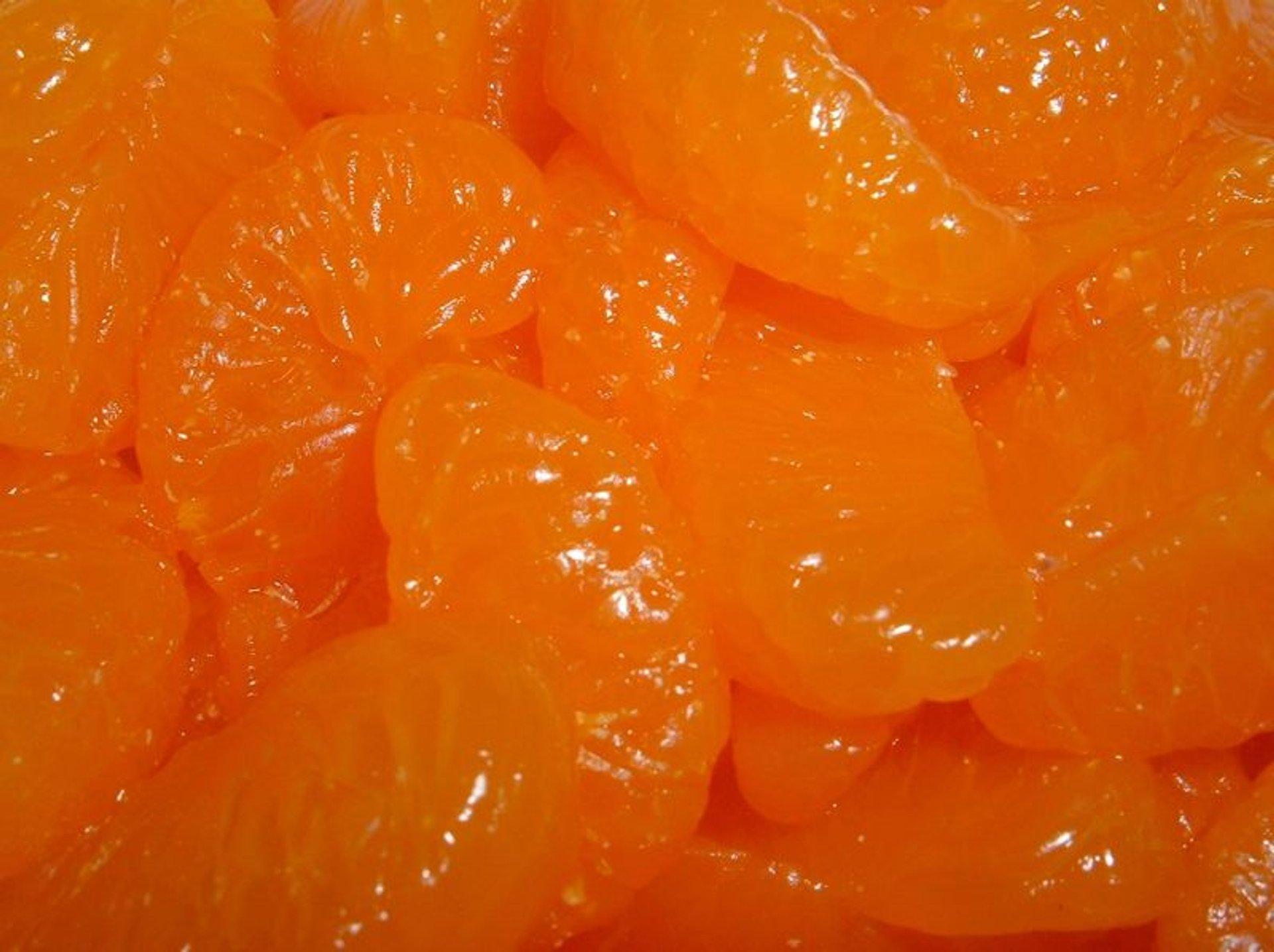 Mandarin Orange in Costa Rica - Best Season 2020