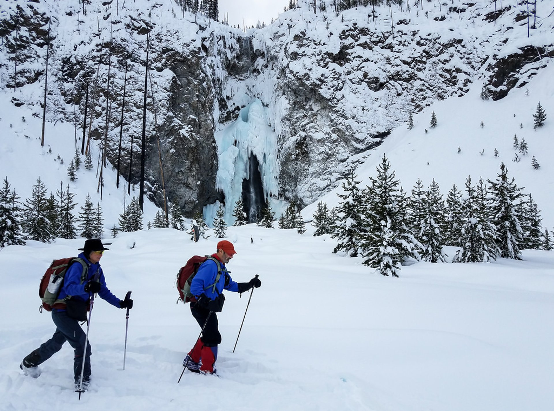 Cross-Country Skiing and Snowshoeing in Yellowstone National Park - Best Season