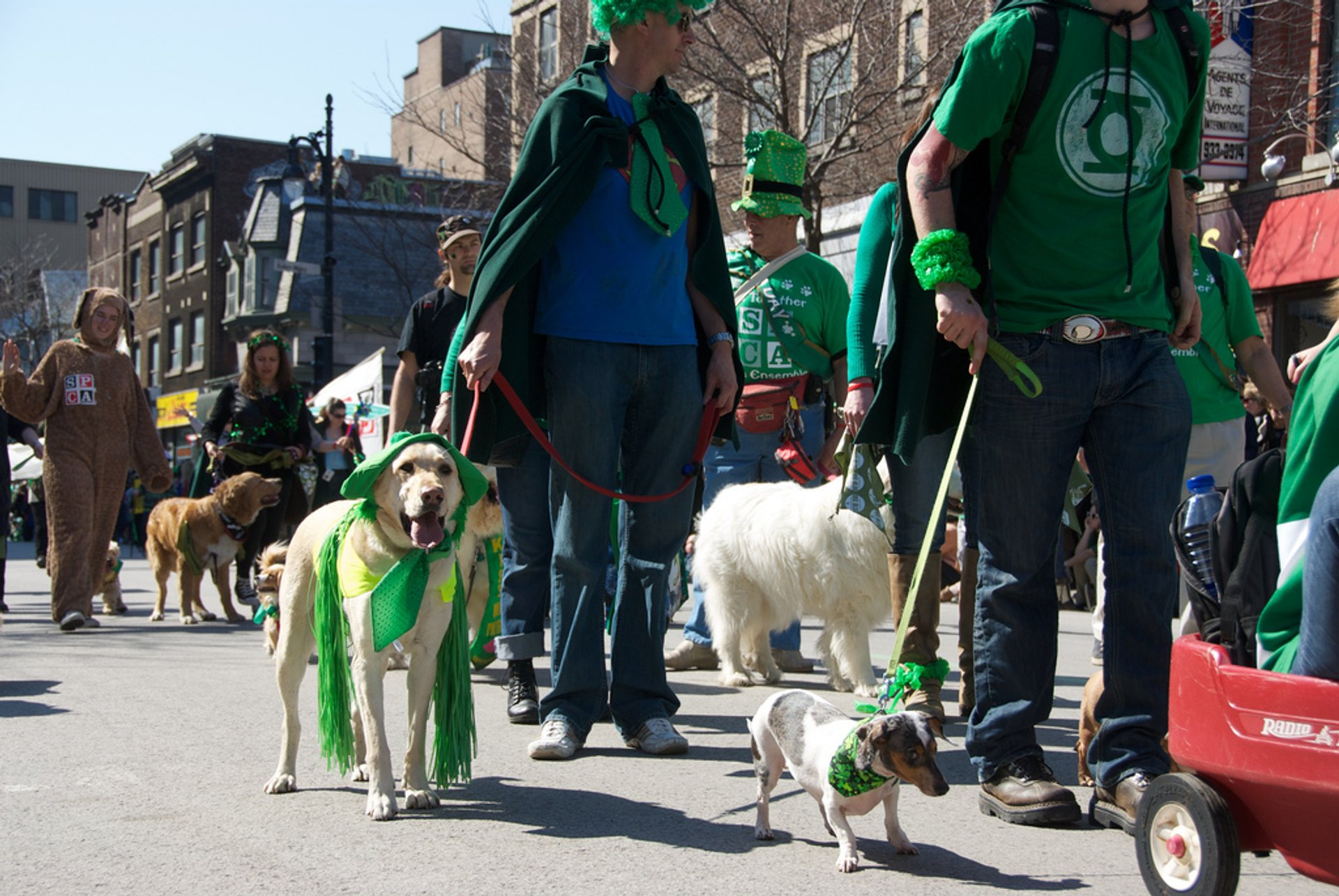 Best time to see St. Patrick's Parade in Montreal 2020