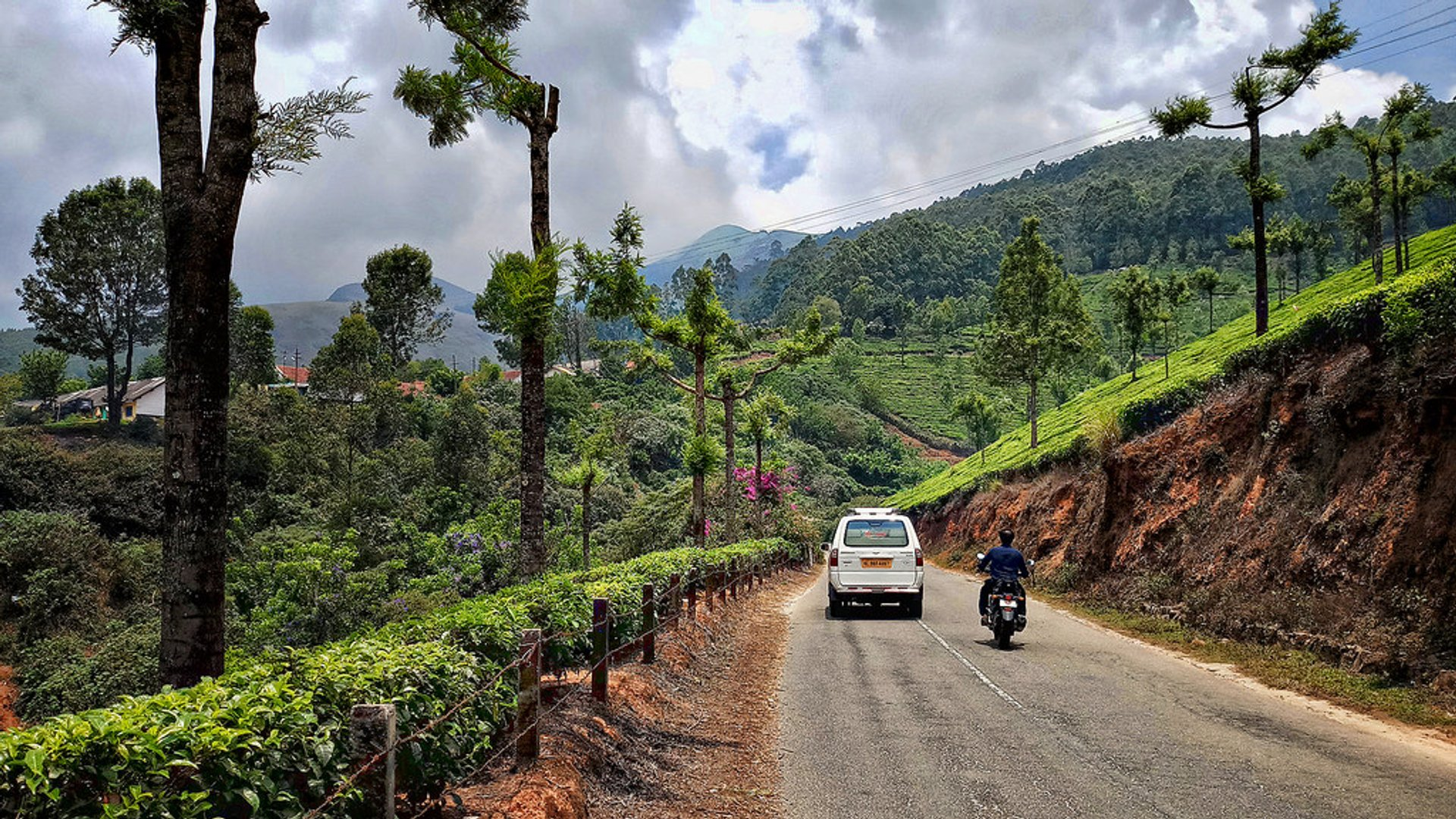 Munnar Road in Kerala - Best Season 2019