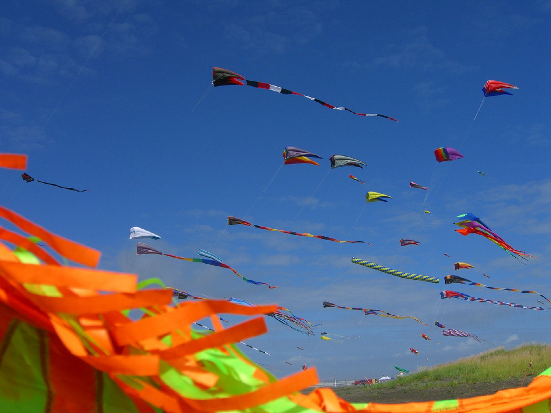 Washington State International Kite Festival in Seattle 2020 - Best Time