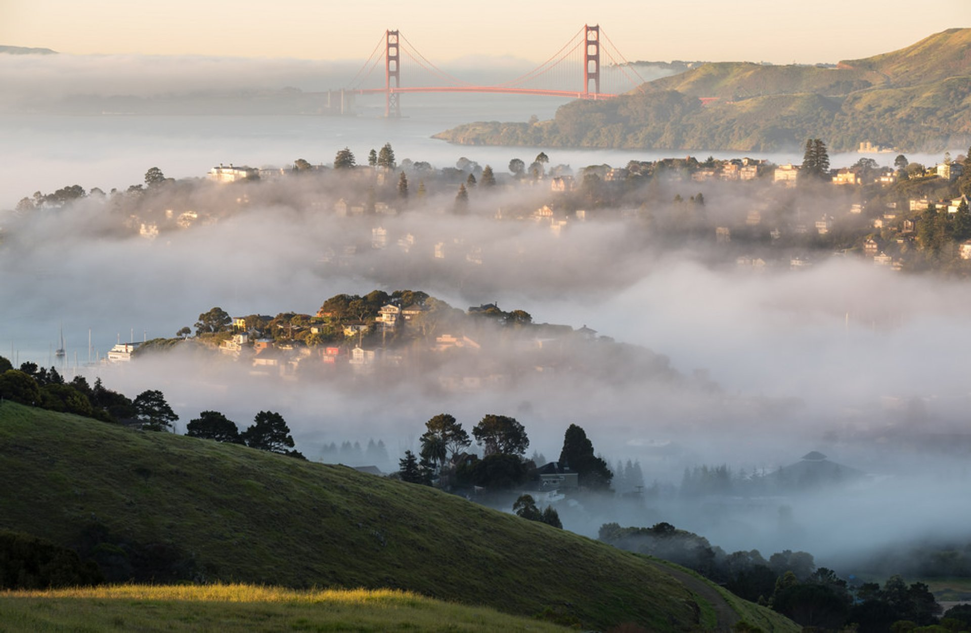 Best time to see Fogs in San Francisco 2020