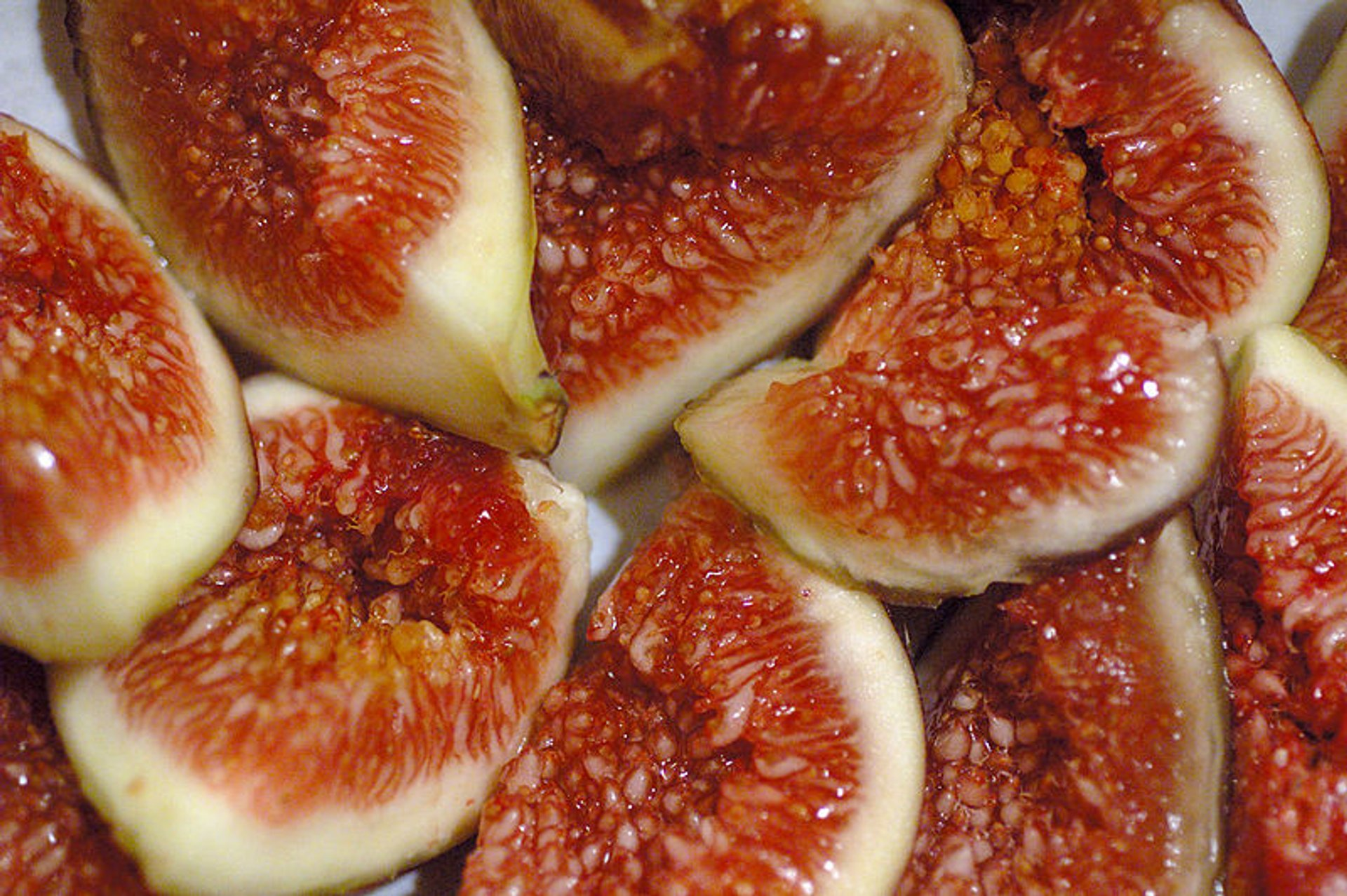 Figs in Montenegro 2020 - Best Time
