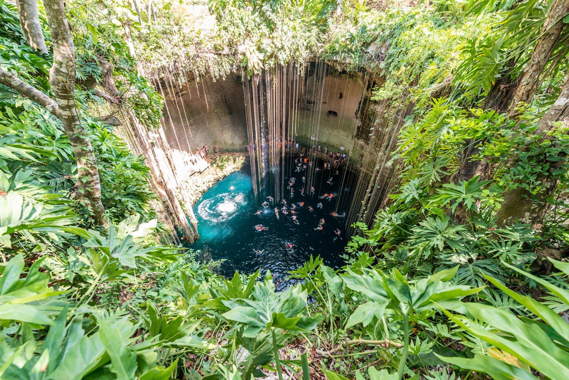 Cenote-Ik Kil 2020