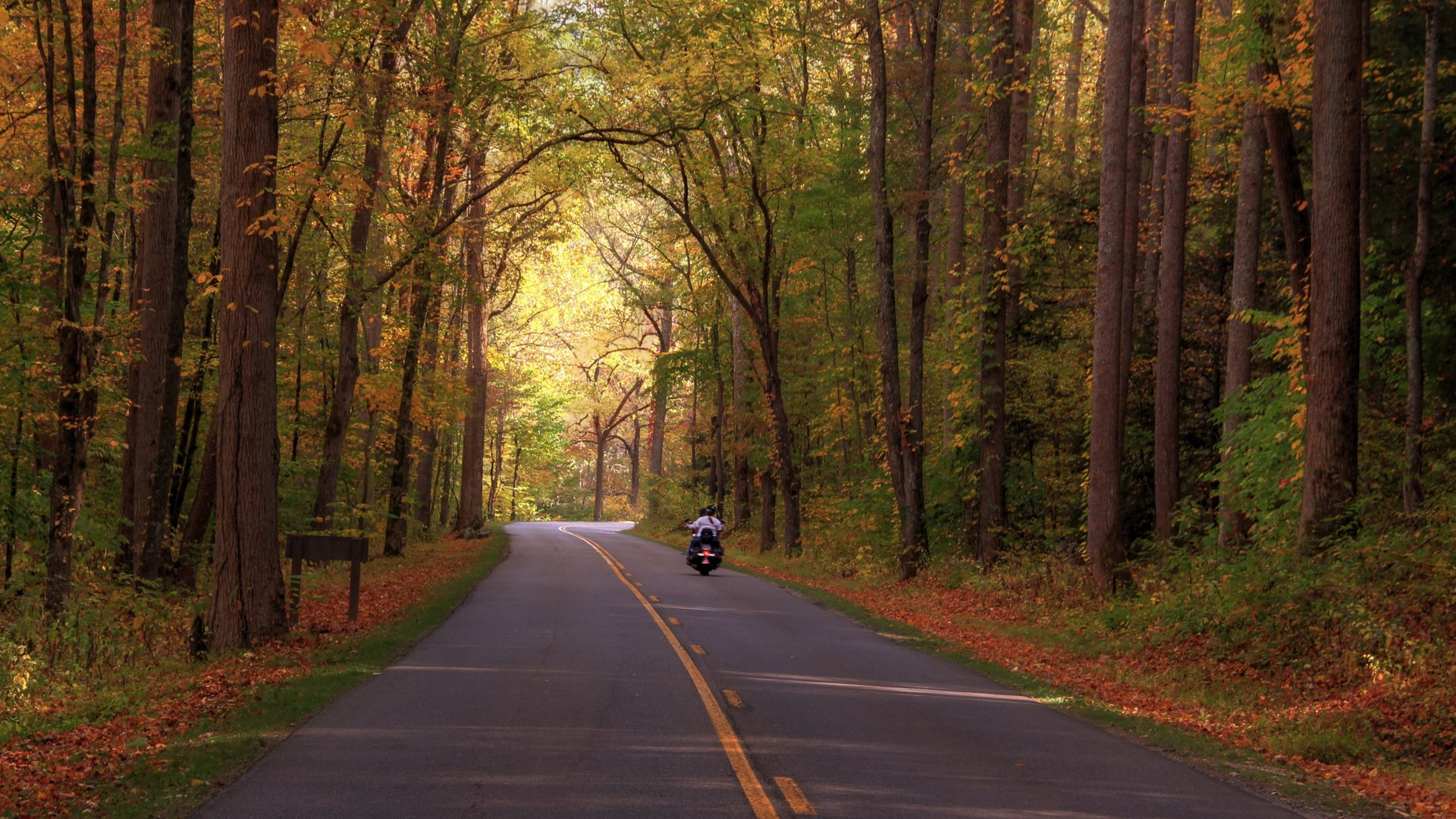 A motorcyclist and friend enjoy a ride on the Little River Road near Metcalf Bottoms in the Great Smoky Mountains national park in autumn 2019