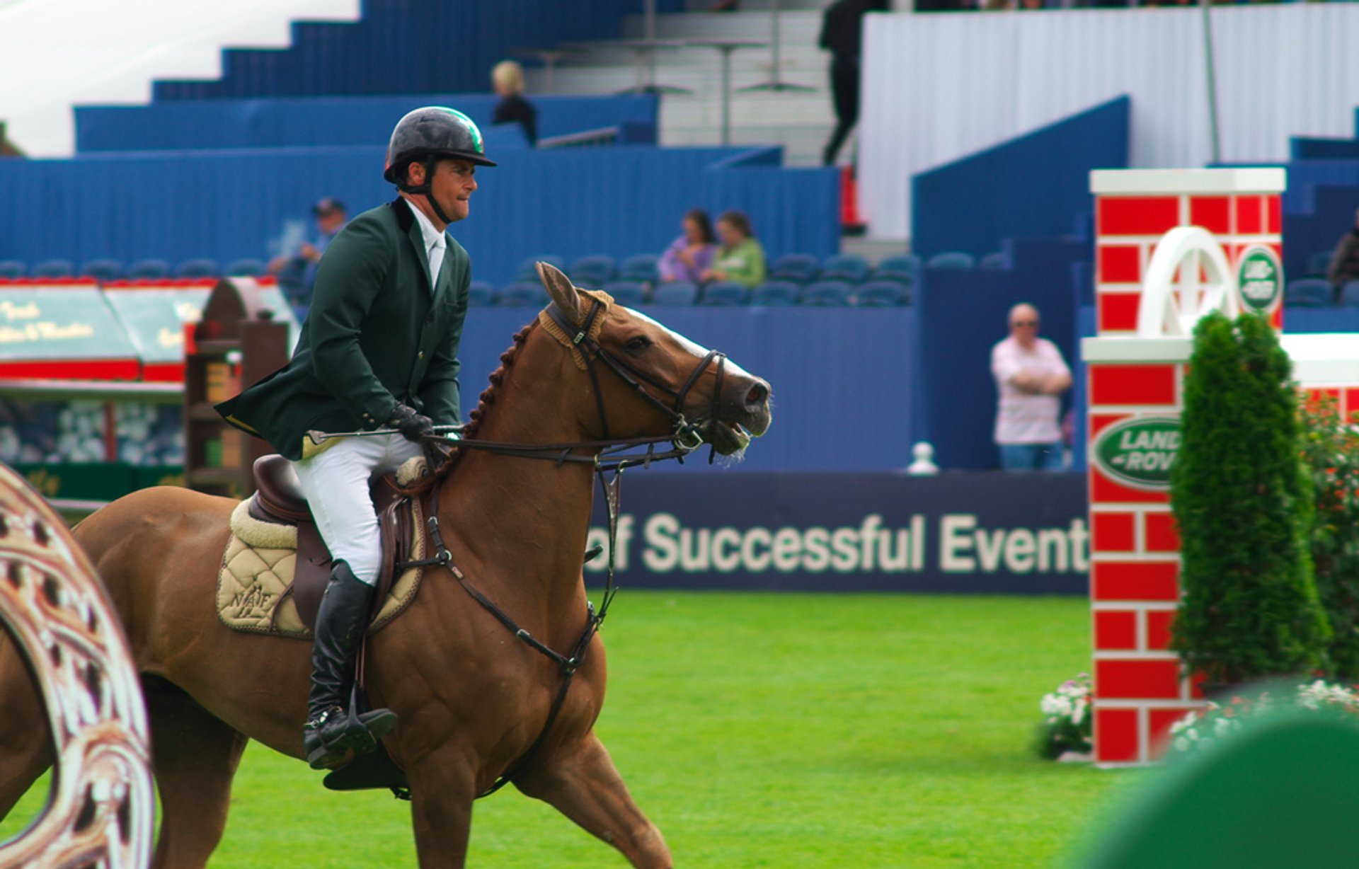Dublin Horse Show in Dublin - Best Season 2019