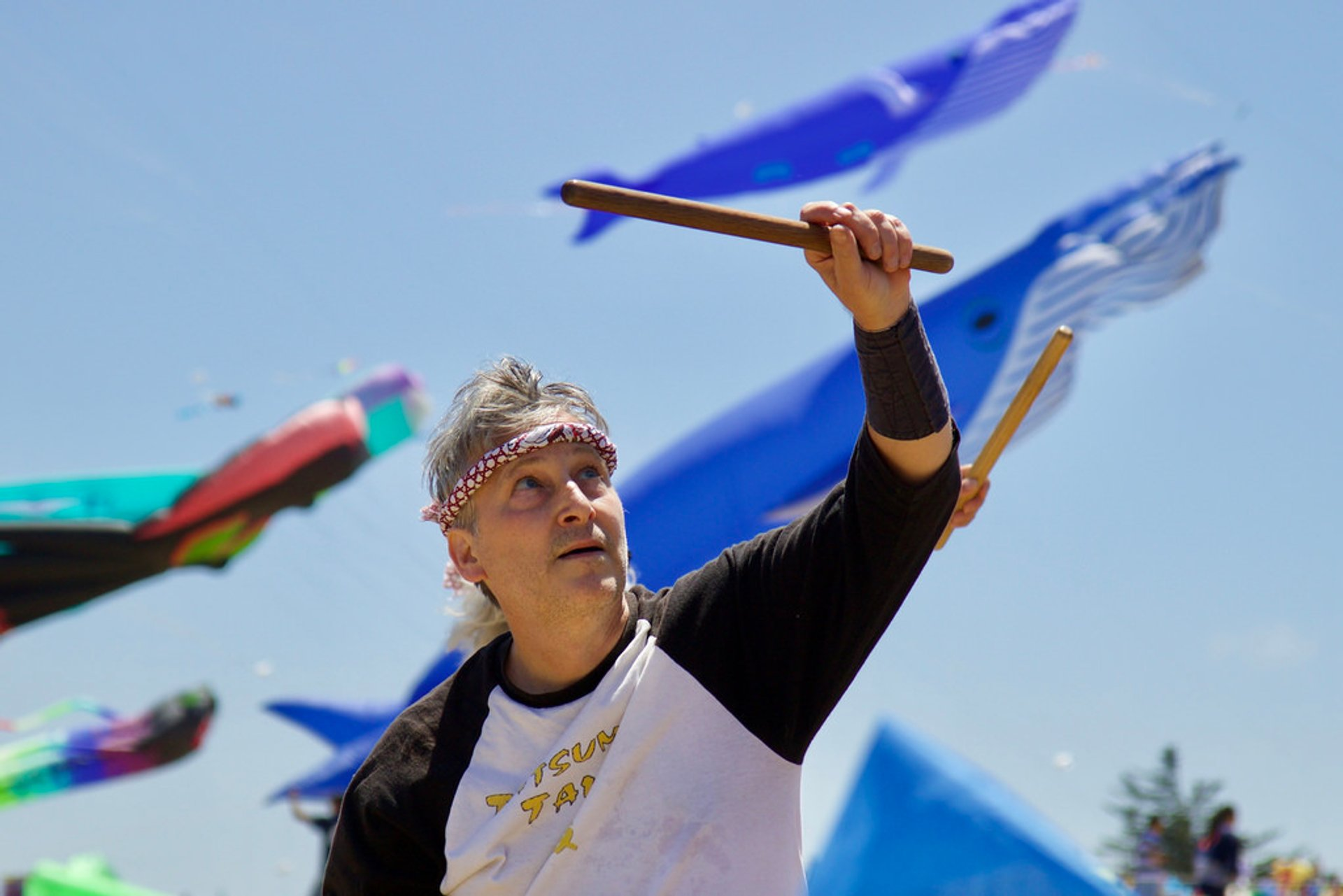 Best time for Berkeley Kite Festival in San Francisco 2020