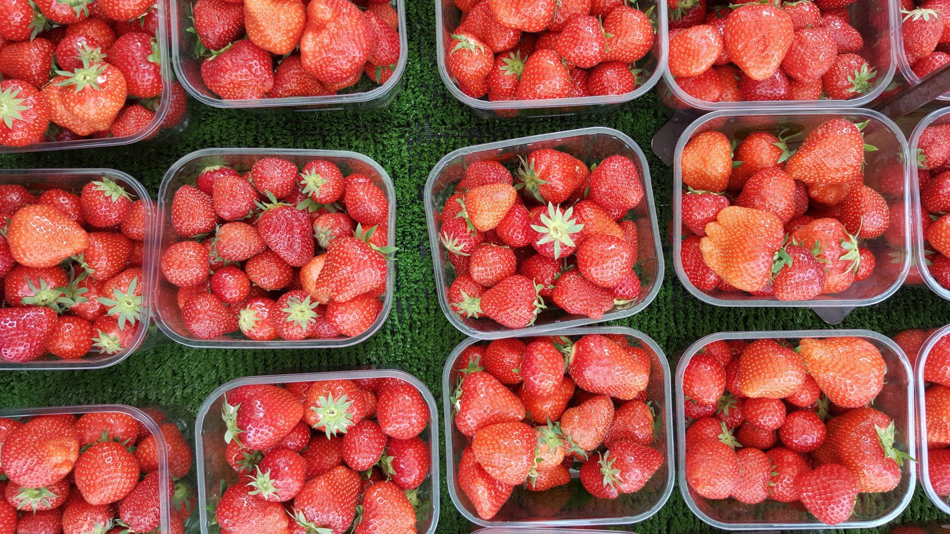 Strawberry Season and Festa in Malta 2020 - Best Time