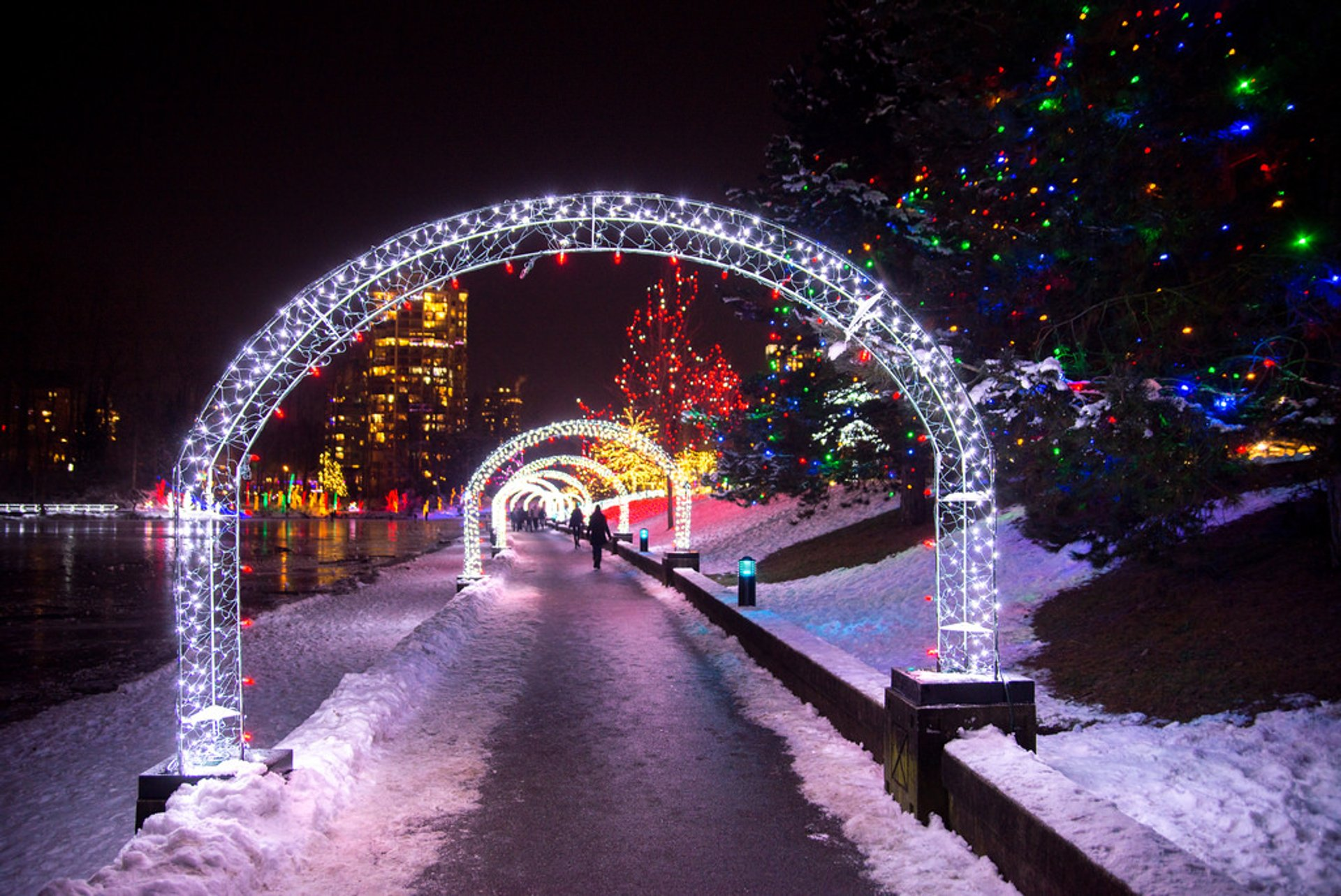 Winter lights of Lafarge Lake 2020