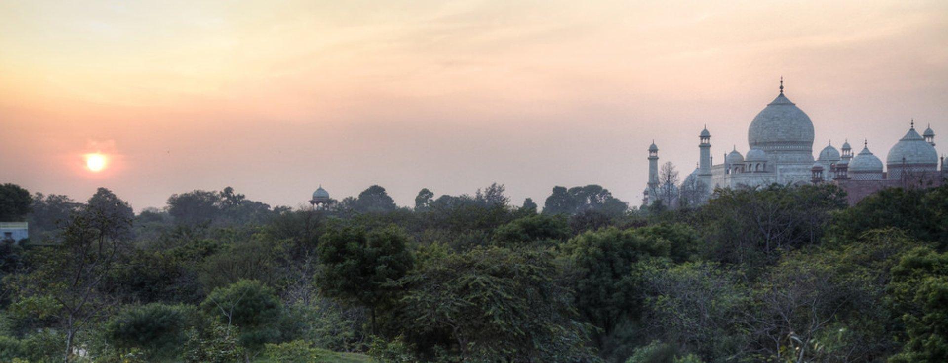 Taj Nature Walk Blooming in Taj Mahal and Agra  2019 - Best Time