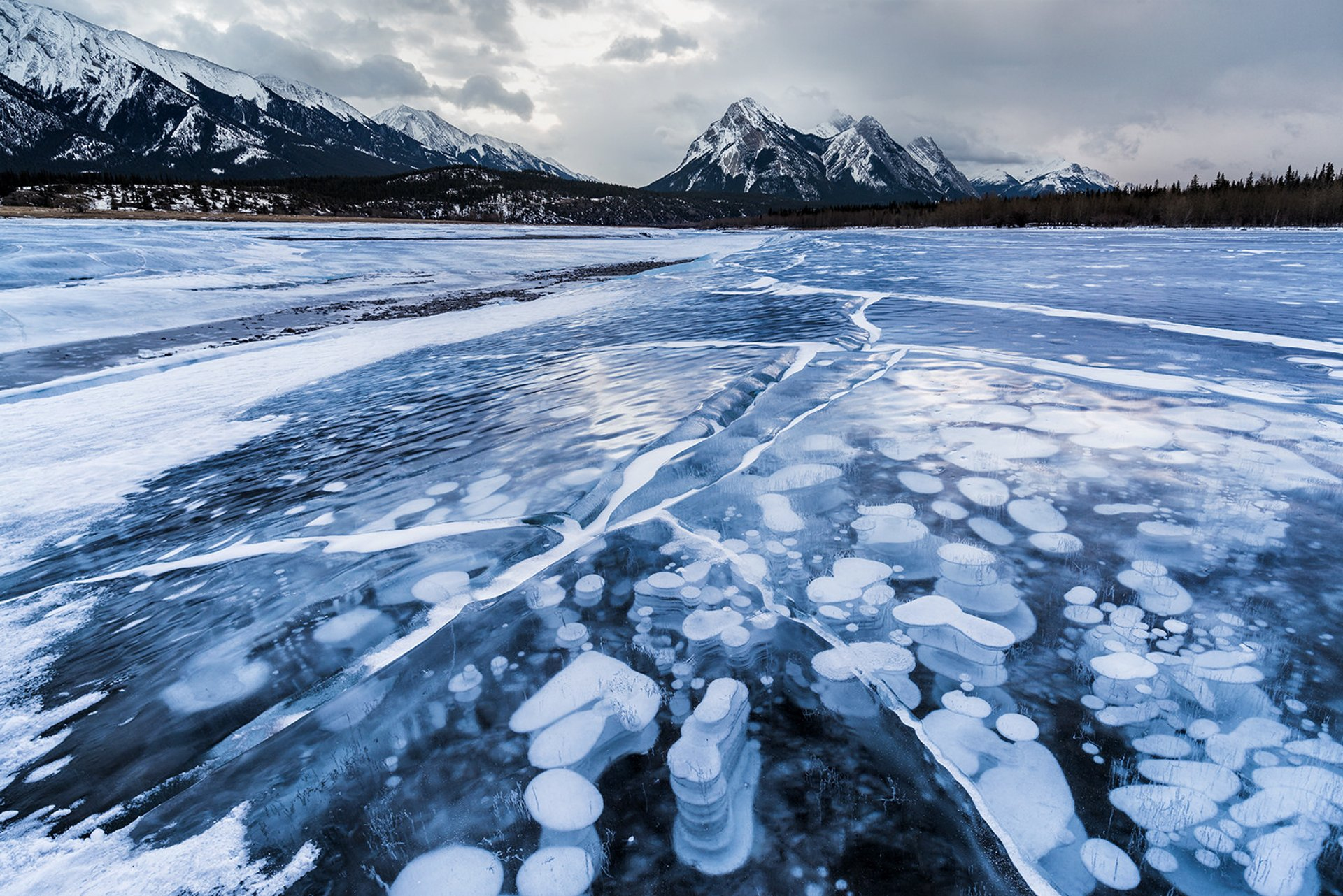 Frozen Abraham Lake in Banff & Jasper National Parks 2019 - Best Time