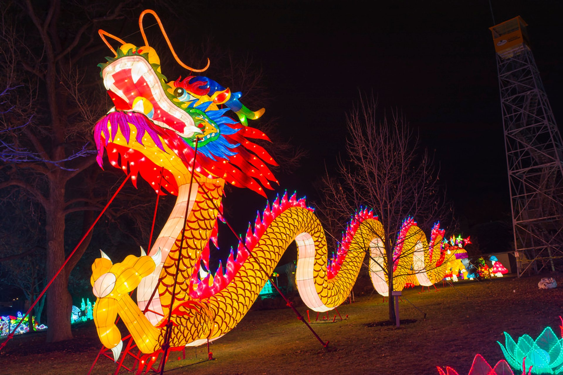 Dragon Lights Columbus in Midwest 2020 - Best Time