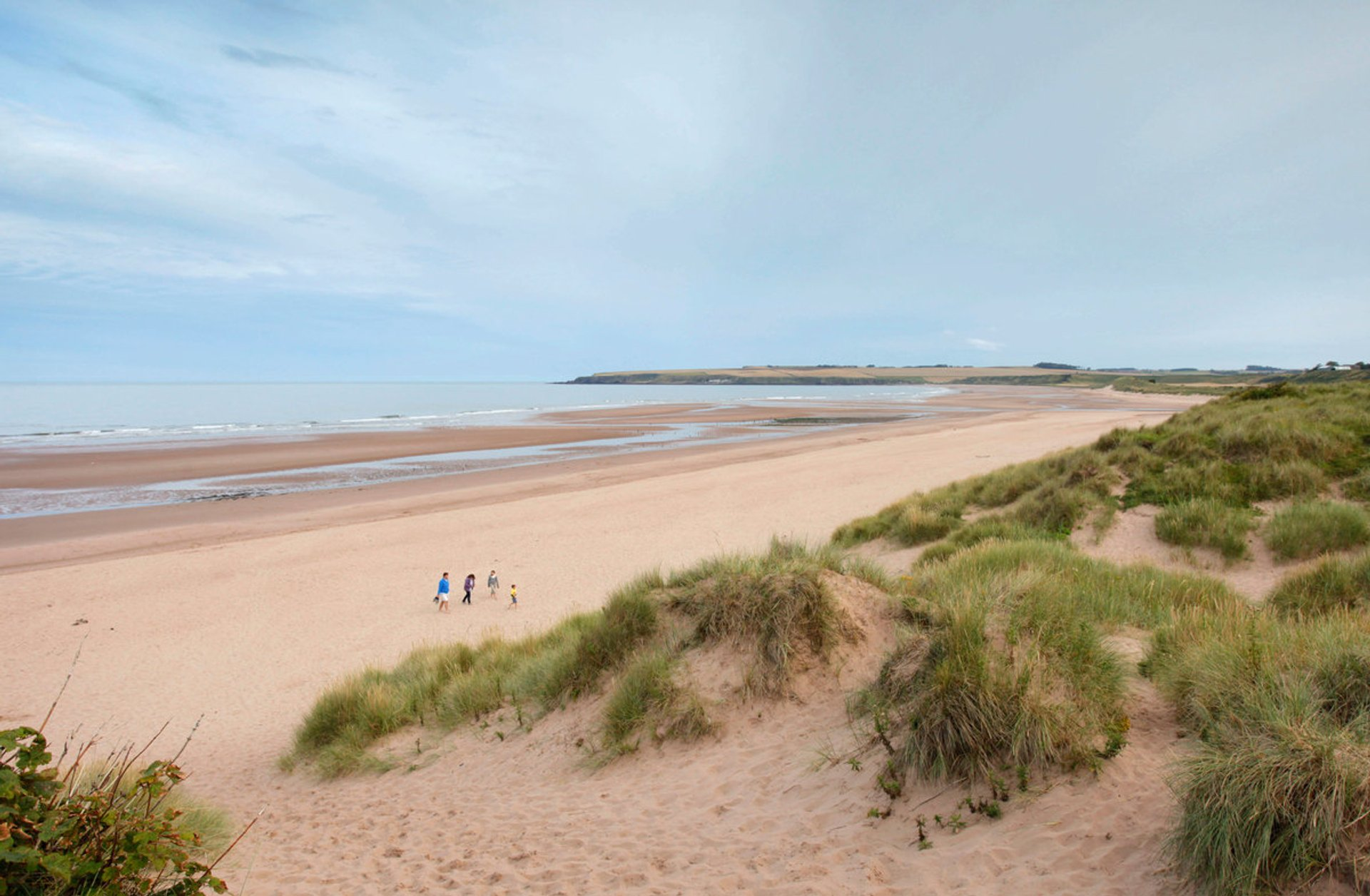 Best time for Lunan Bay Bathing Season in Scotland 2020