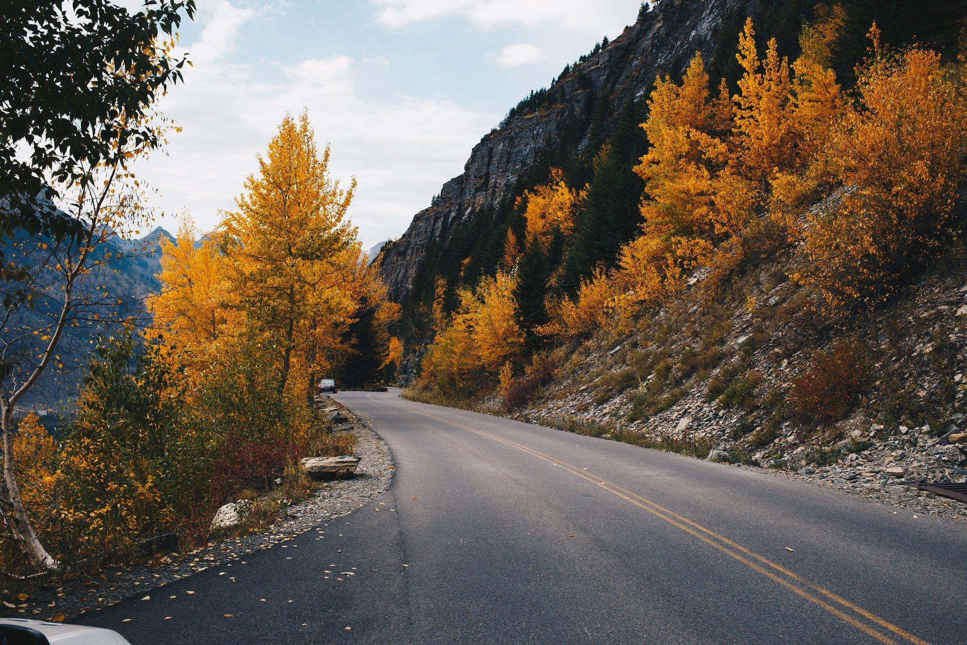 Fall colors along the Sun Road 2020