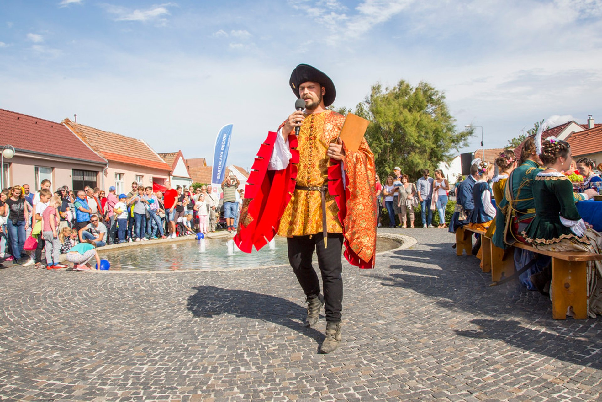 Best time to see Goose & Duck Feast in Slovenský Grob in Slovakia