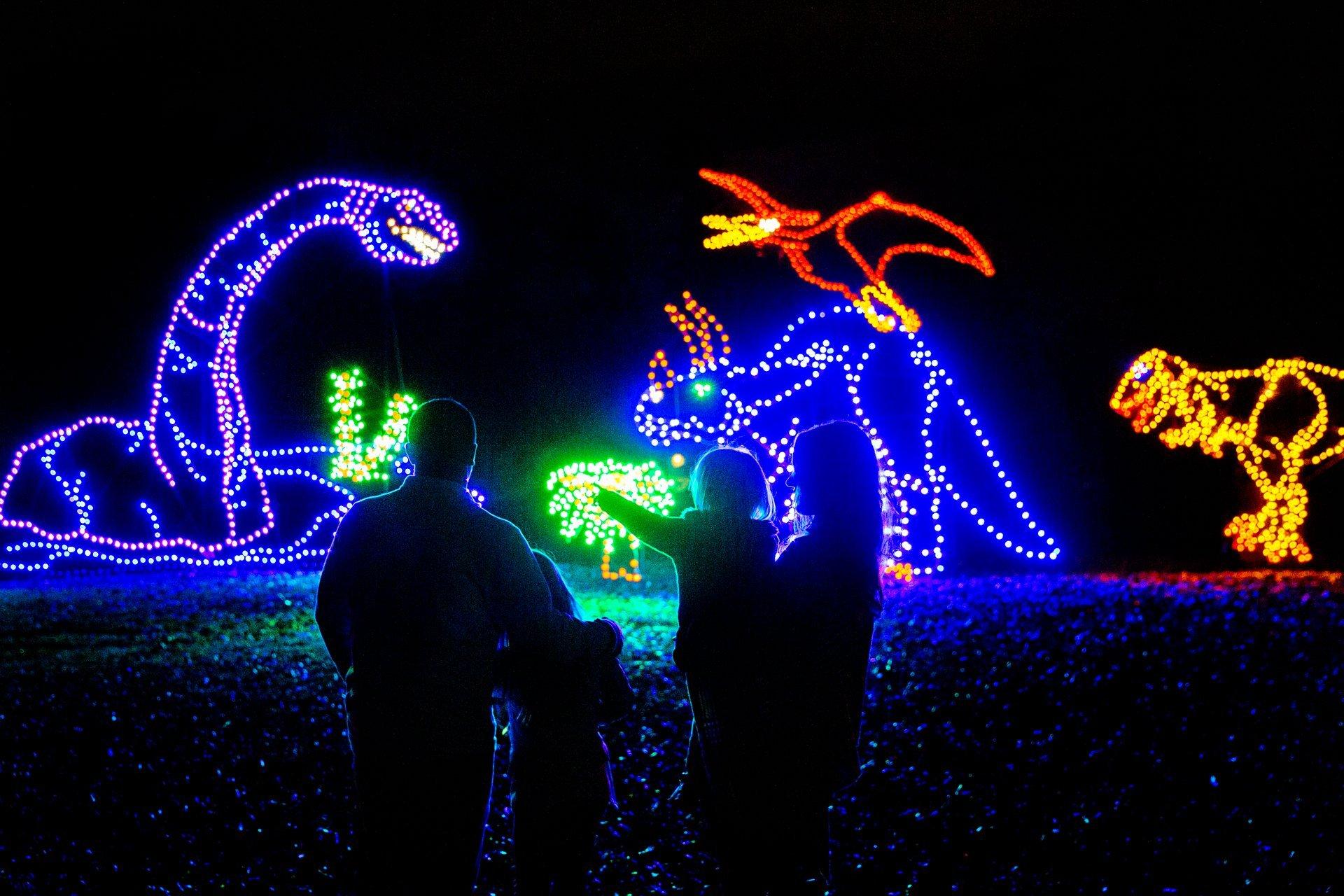 Oglebay Winter Festival of Lights in West Virginia - Best Season 2020