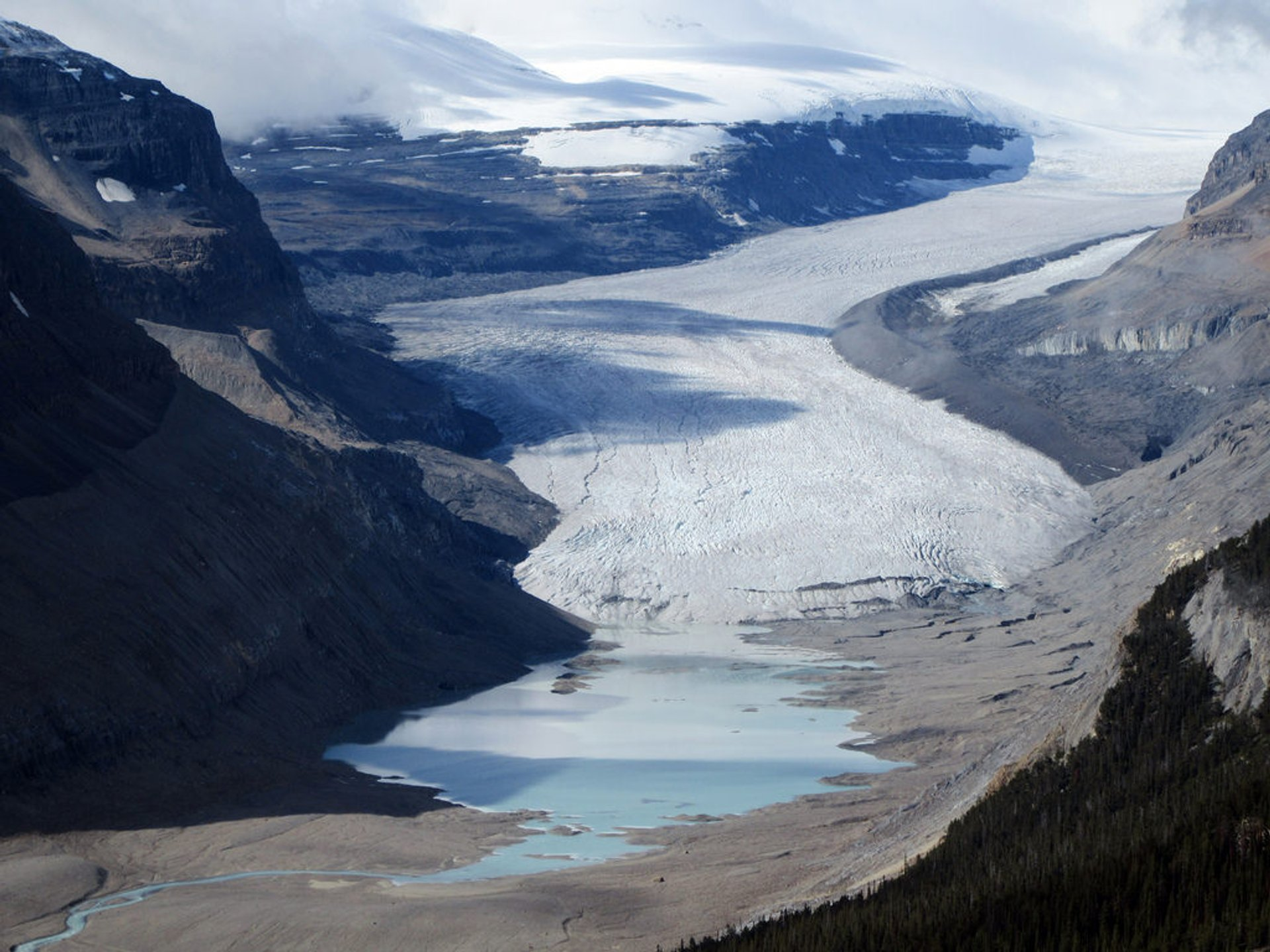 Focus on Saskatchewan Glacier from the Parker Ridge Trail  2020