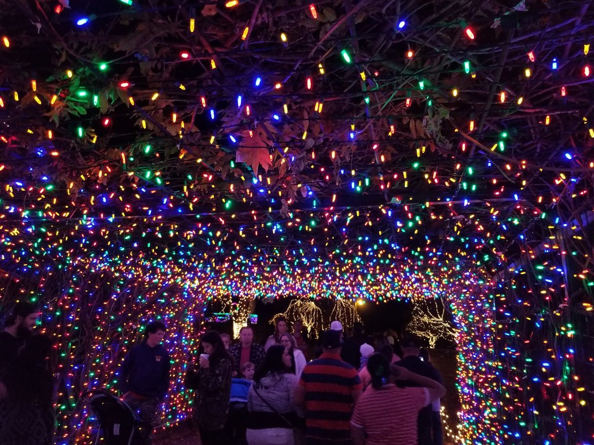 Christmas Lights in Oklahoma 2020 - Best Time