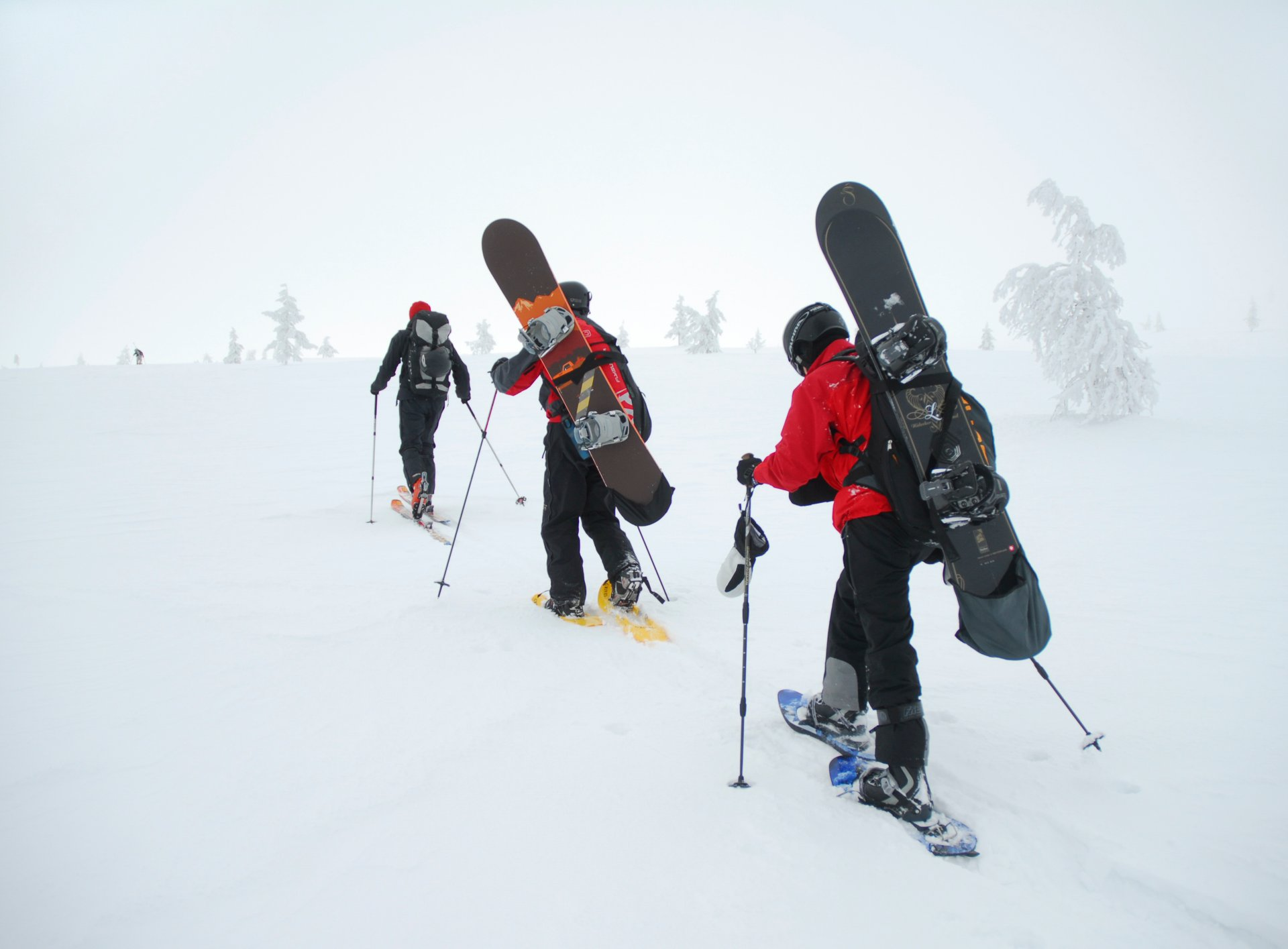 Snowshoeing in Finland - Best Season 2020