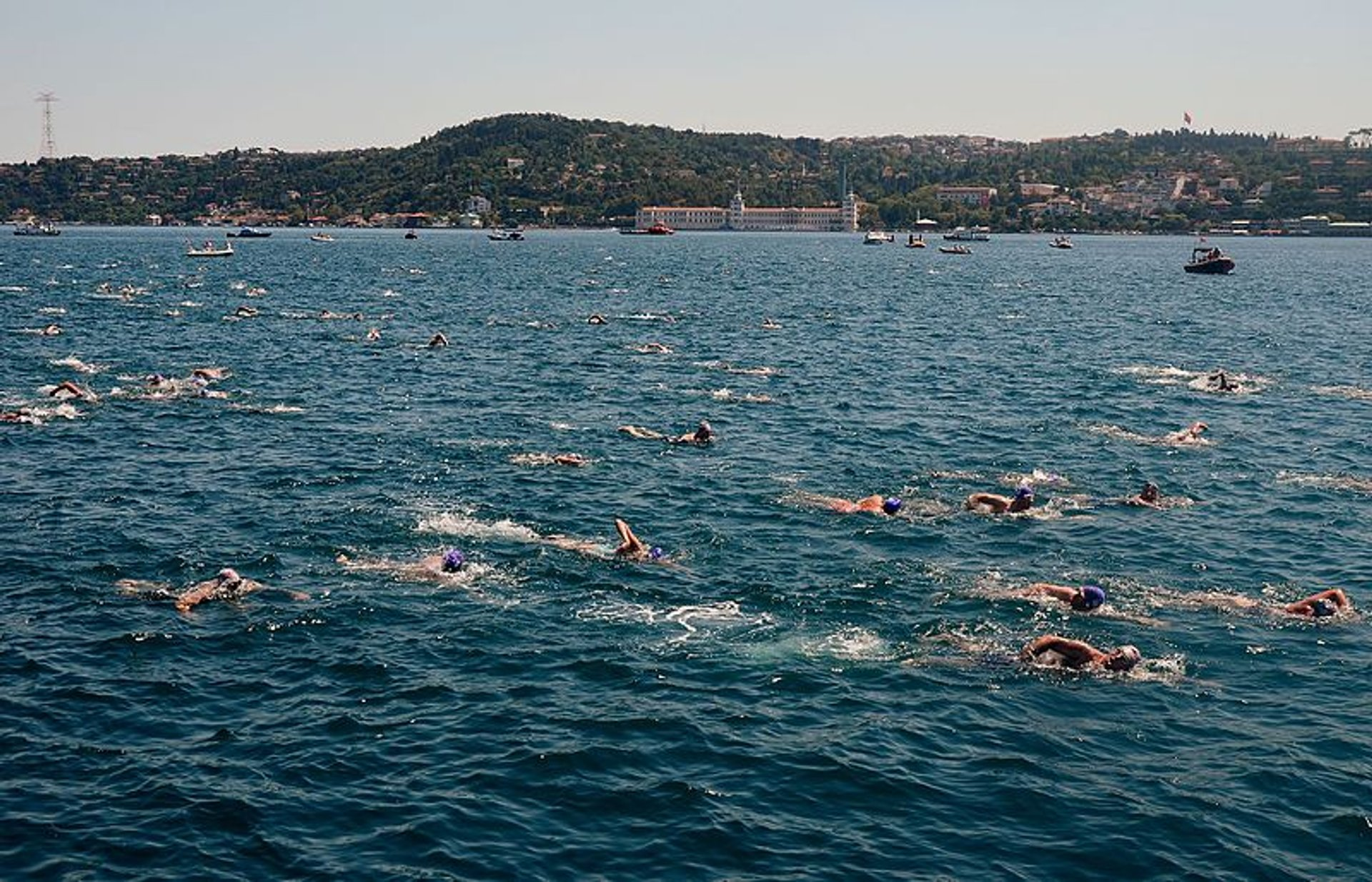 Bosphorus Cross Continental Swim in Istanbul - Best Time