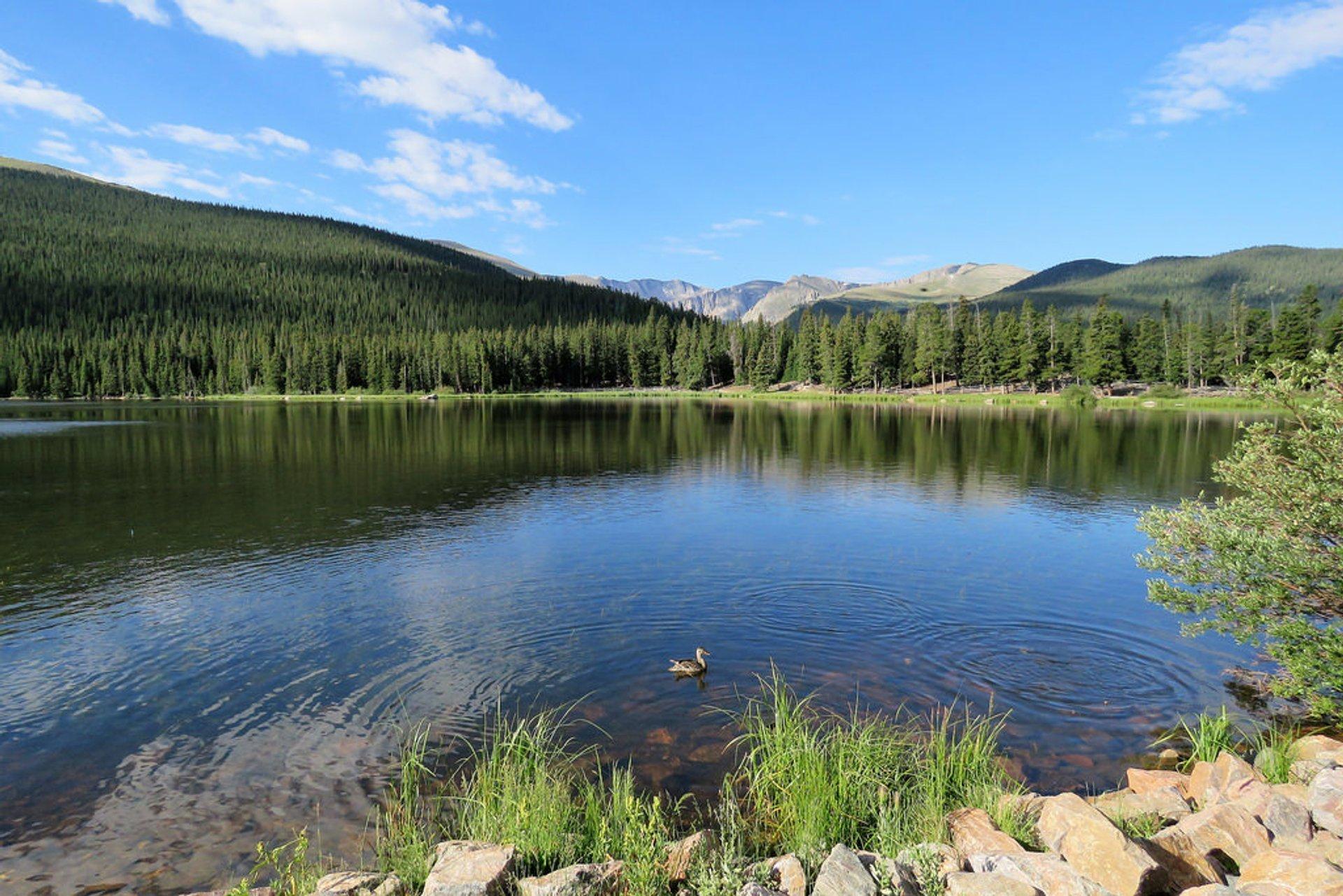 Echo Lake 2020