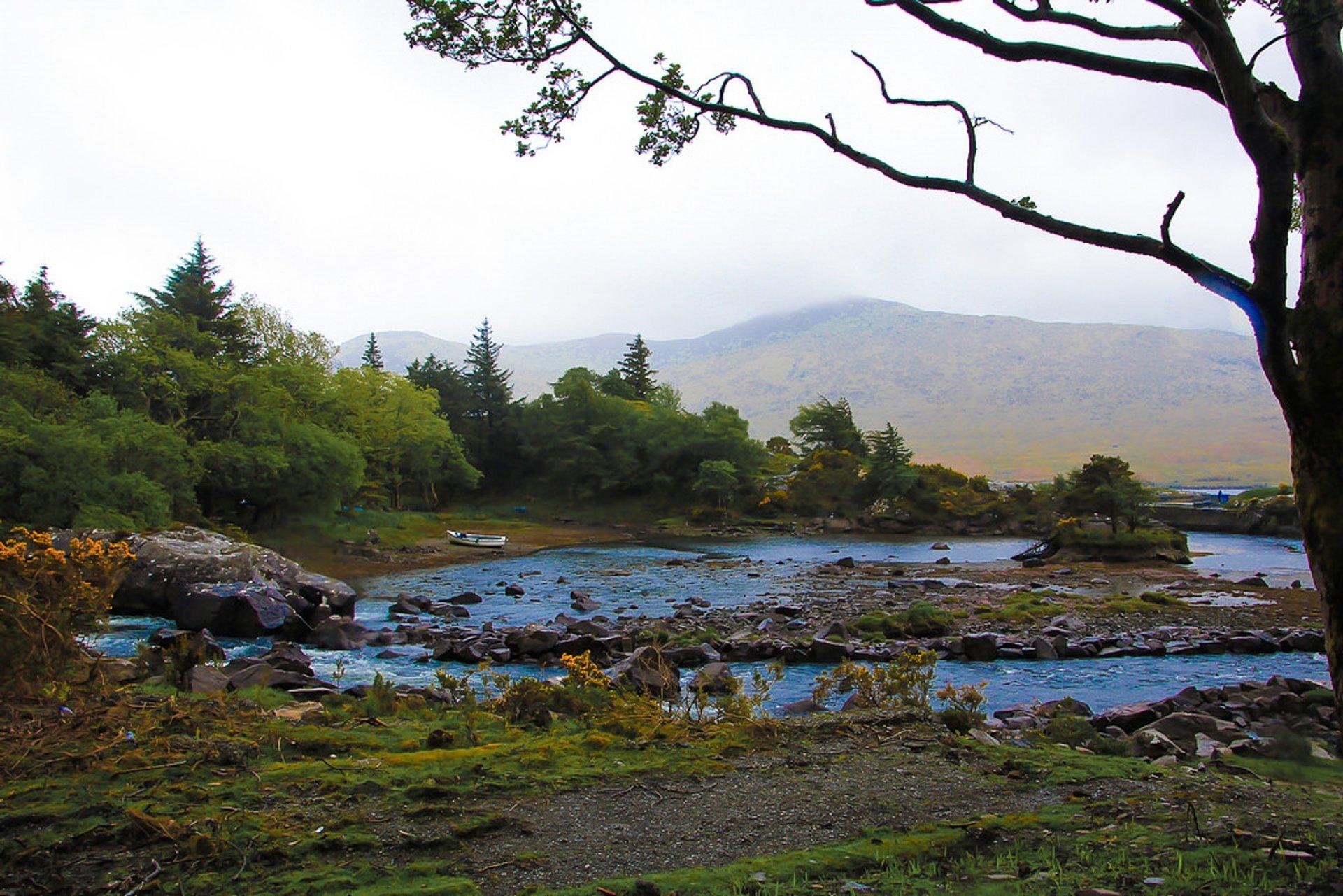 Connemara Region at Best in Ireland - Best Season 2020