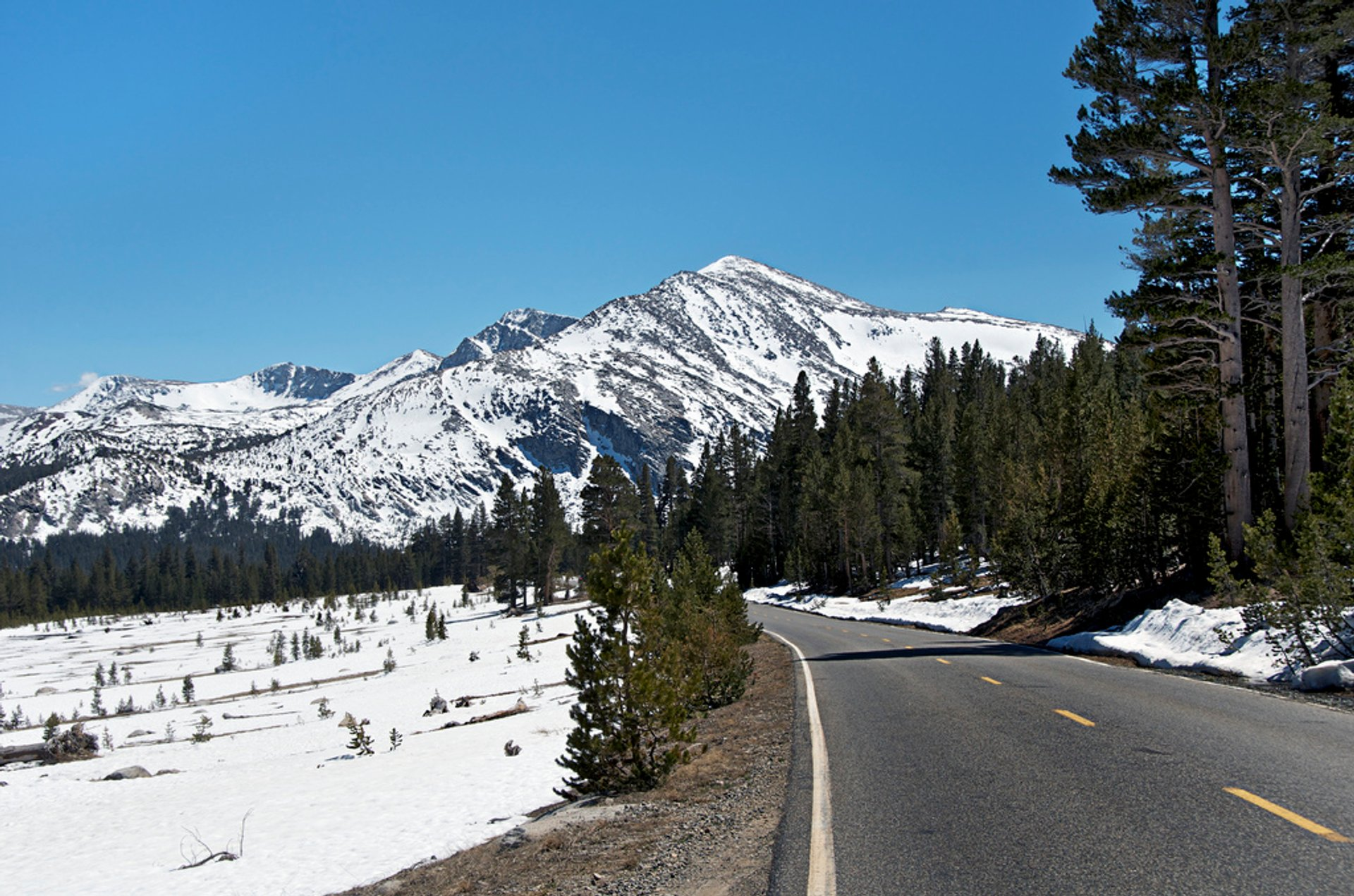Best time to see Tioga Road in Yosemite 2020