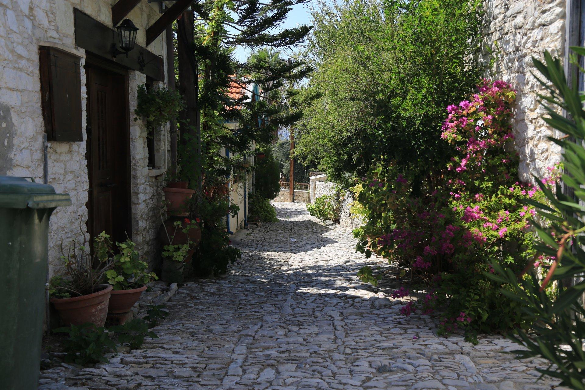Lania, Limassol, Cyprus 2019