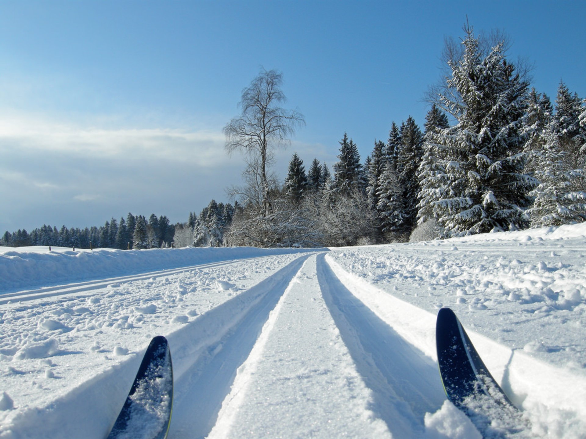 Cross-Country Skiing in Bavaria 2020 - Best Time