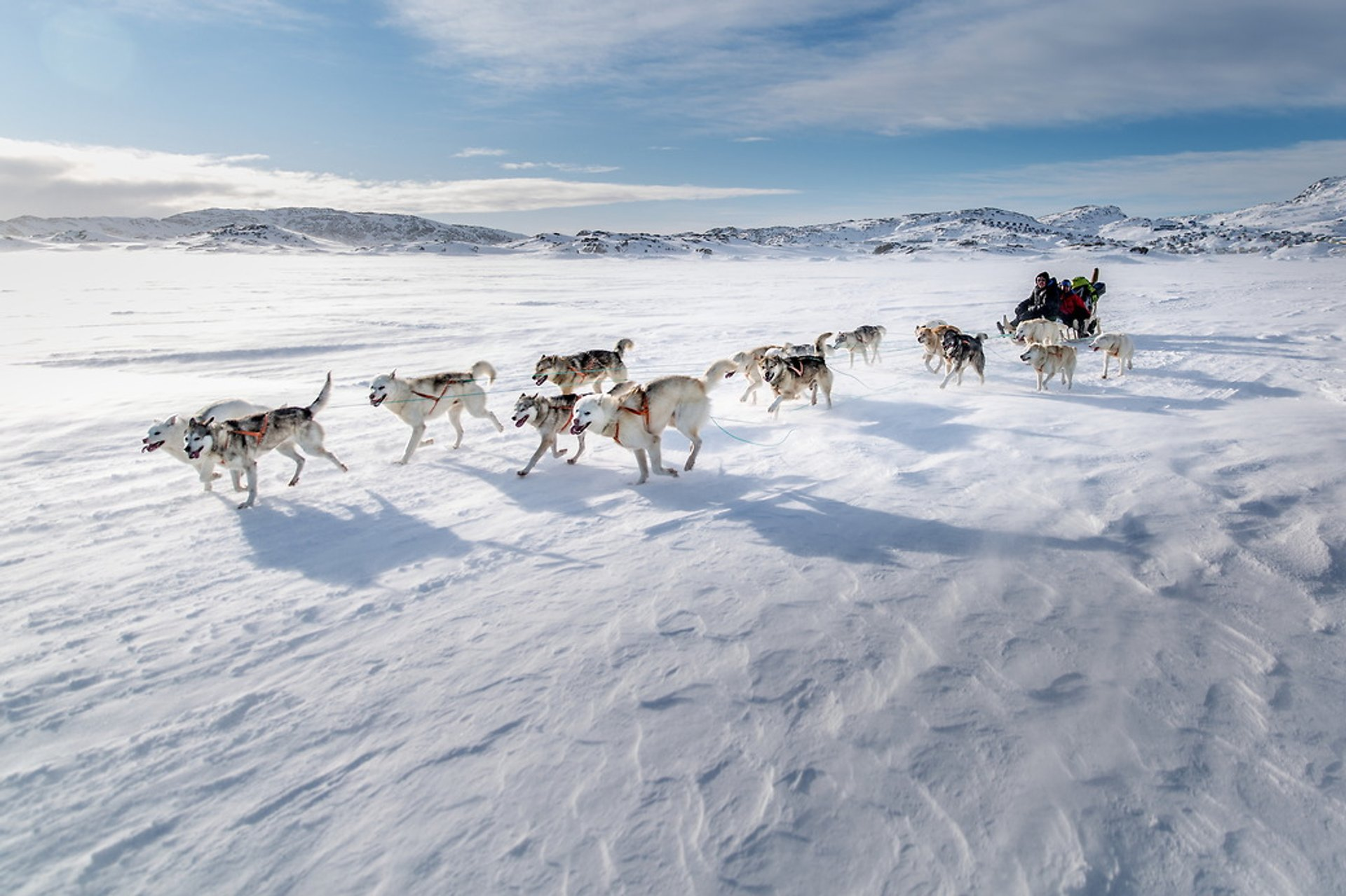 Best time for Dog Sledding in Greenland 2019