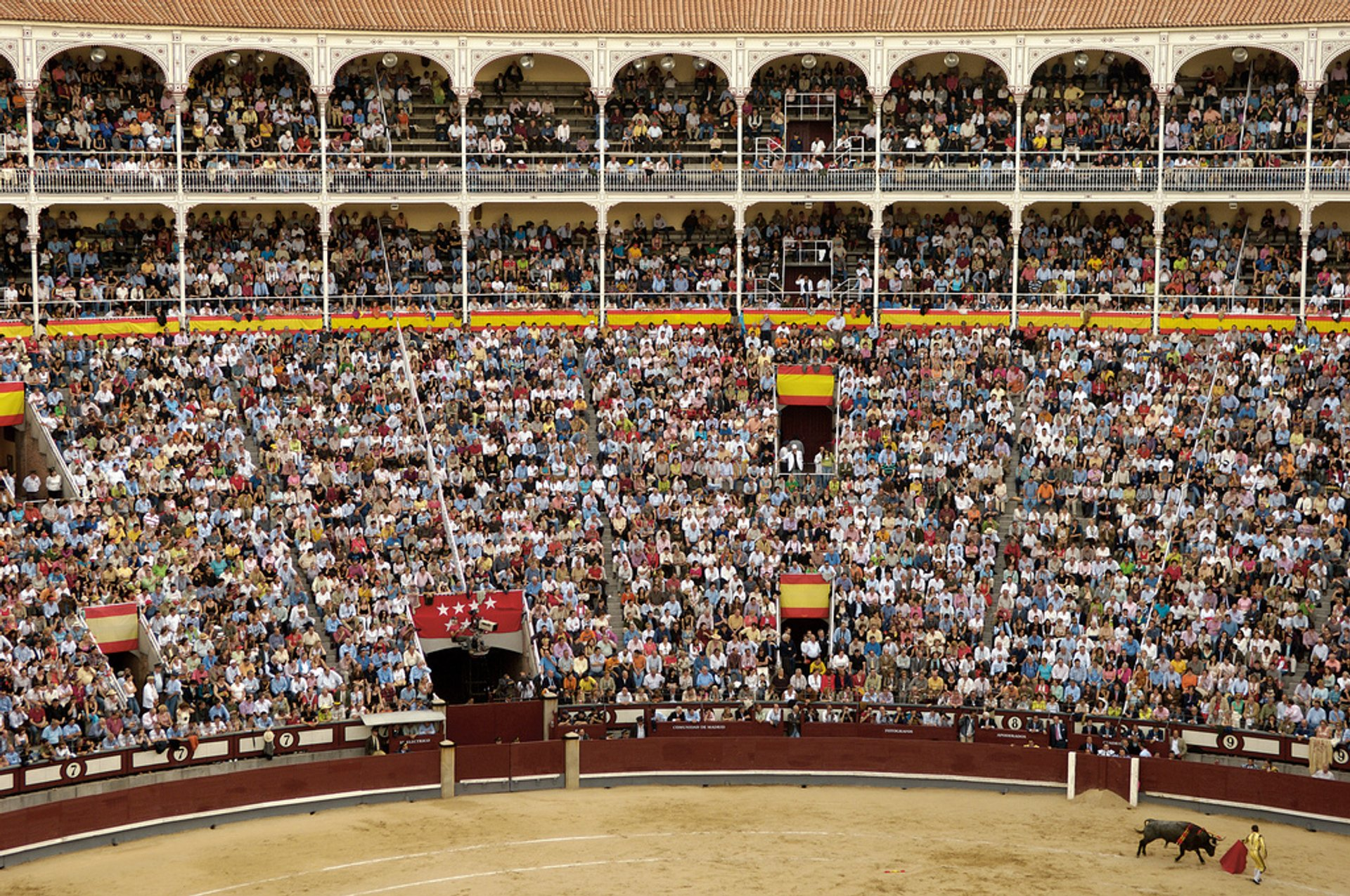Best time to see Bullfighting (Corrida de Toros) in Madrid 2020