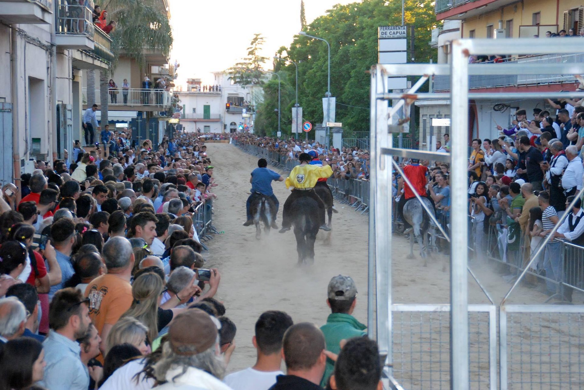 Best time for Palio del Casale 2019