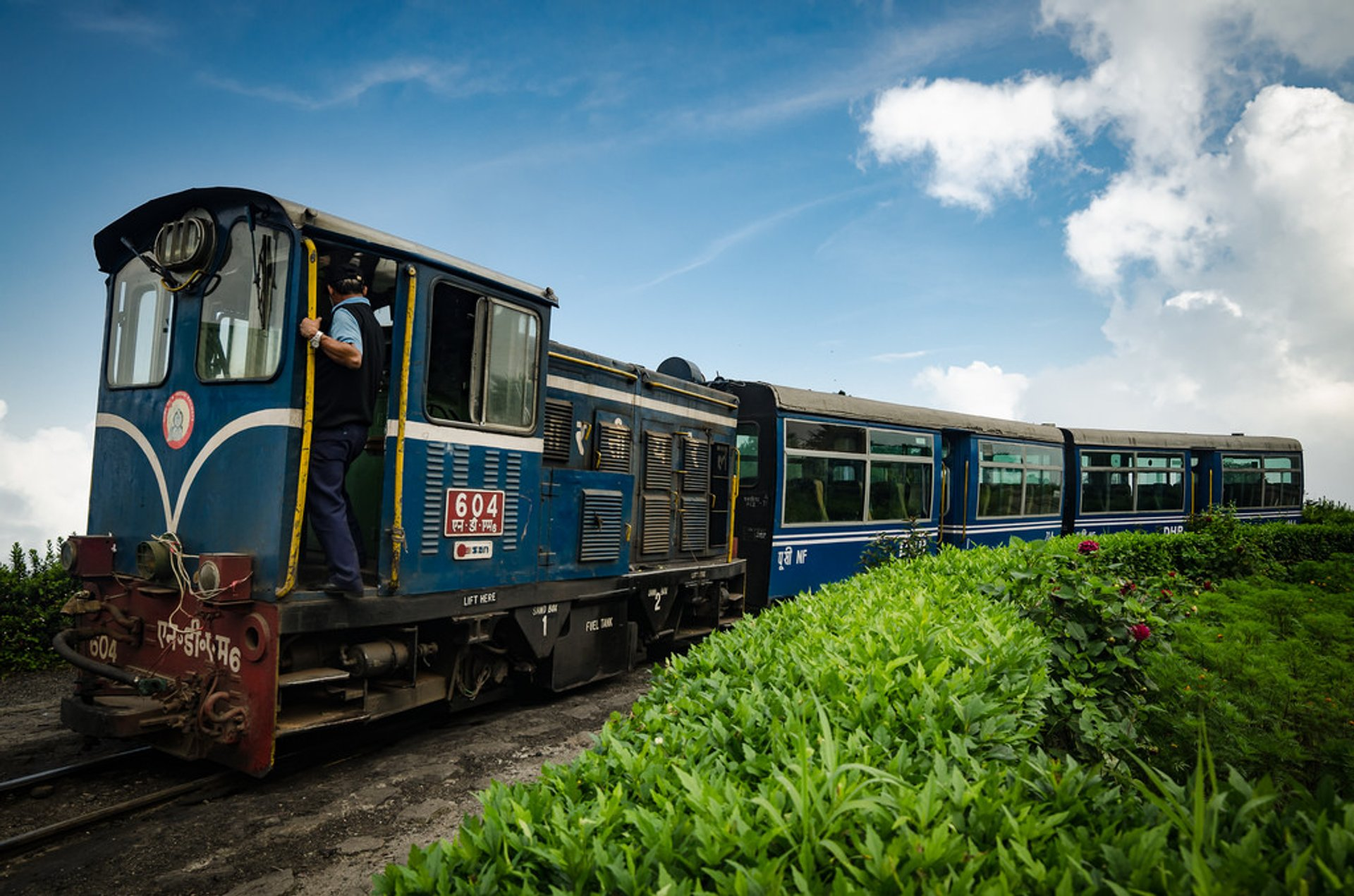 Darjeeling 'toy train' 2019