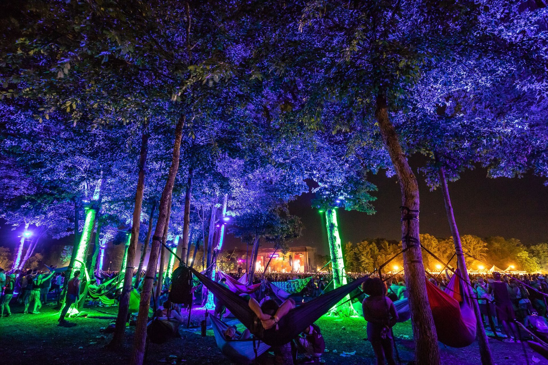 Best time to see Firefly Music Festival 2020