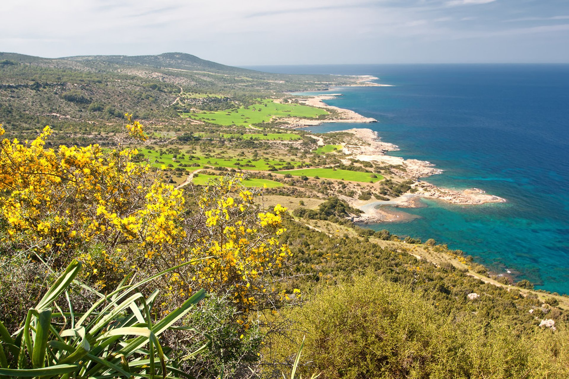 Aphrodite Trail Abloom in Cyprus 2020 - Best Time