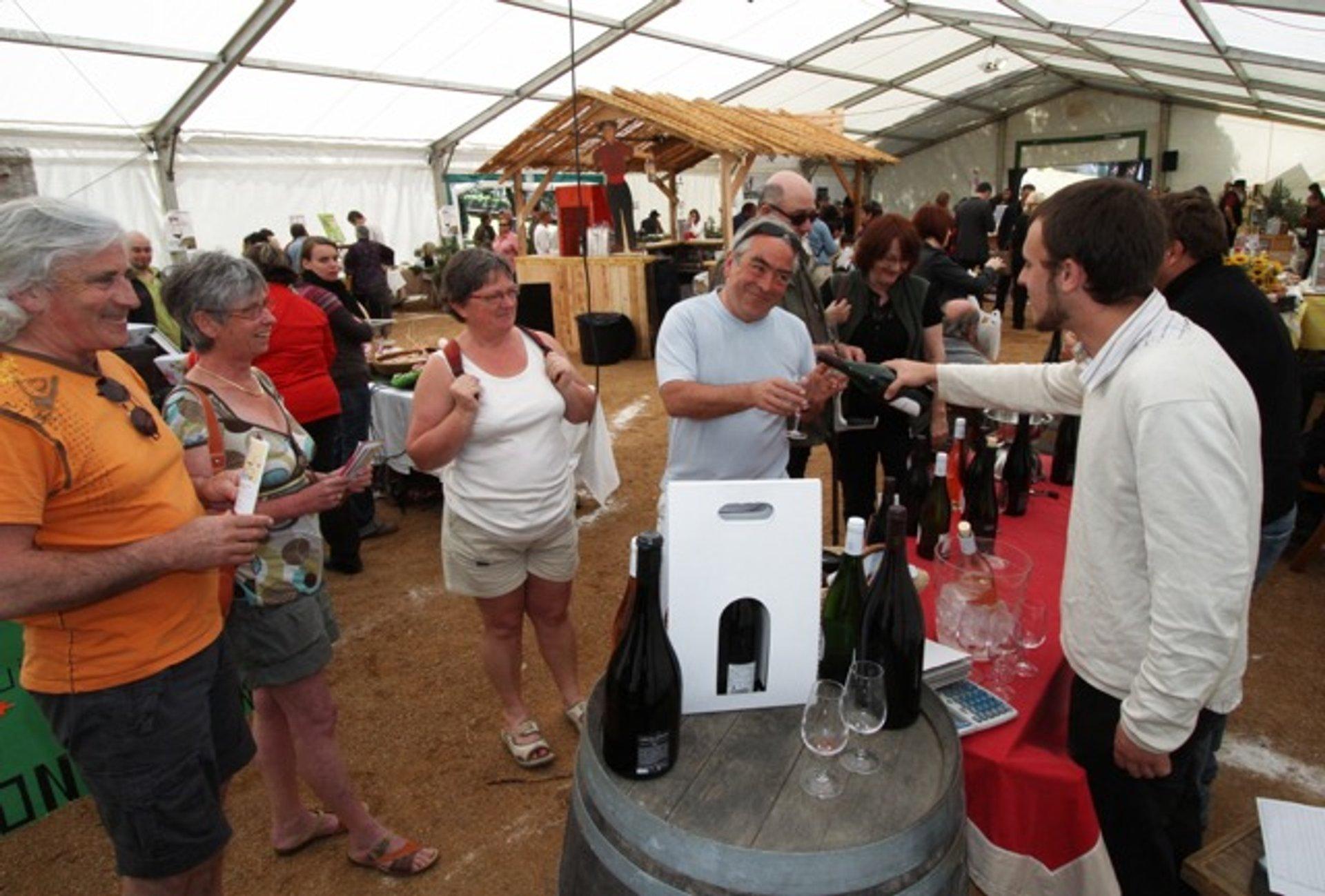 Festival of Corsican Wine or Fiera di u Vinu in Corsica - Best Season 2020