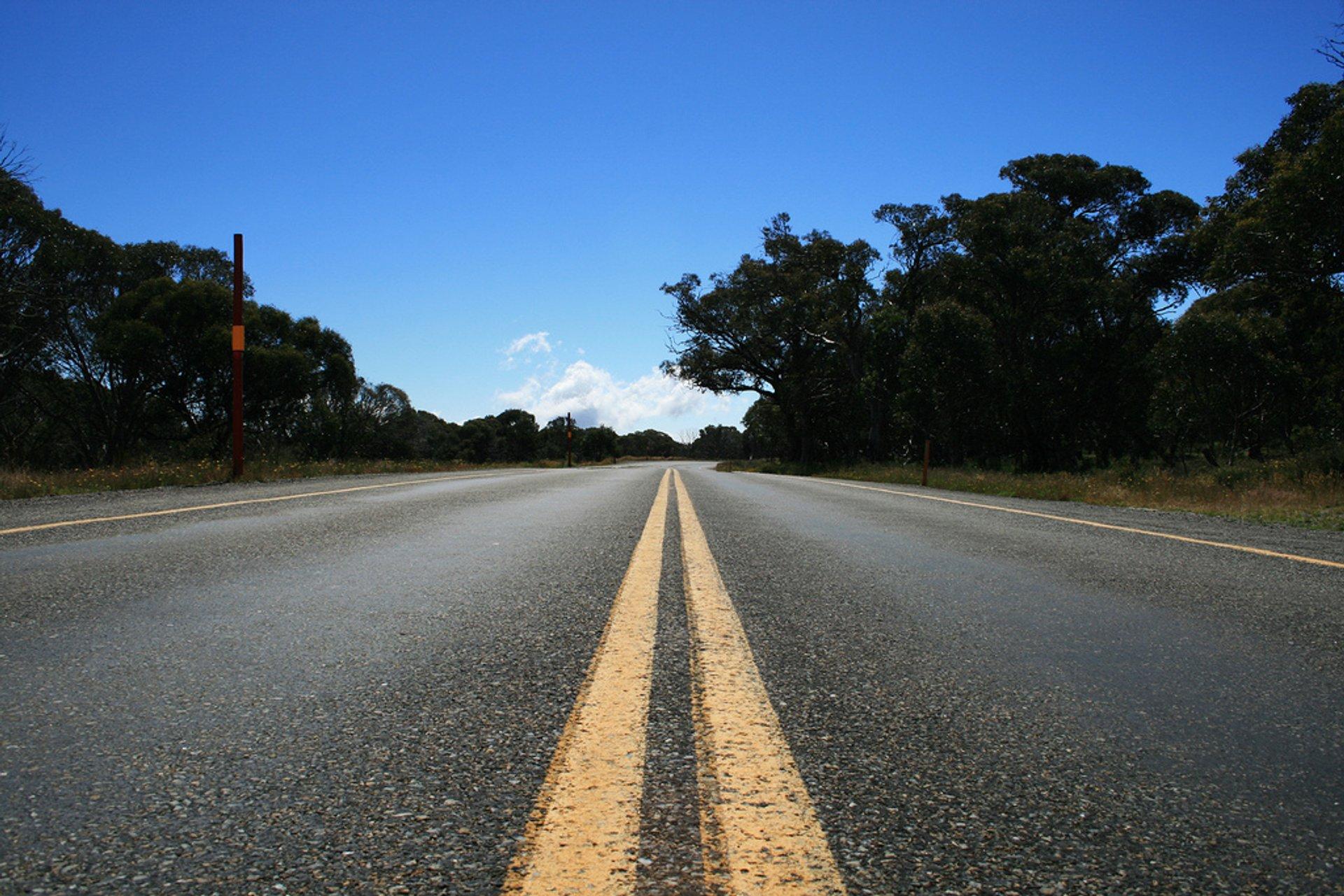 Great Alpine Road in Victoria - Best Season 2020