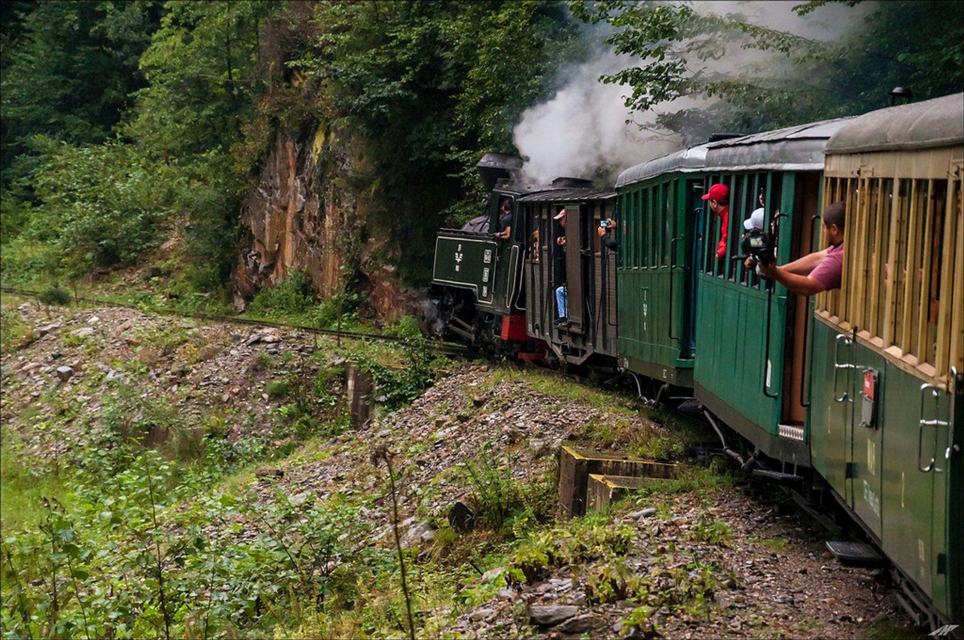 Mocăniţa Steam Train in Romania 2019 - Best Time