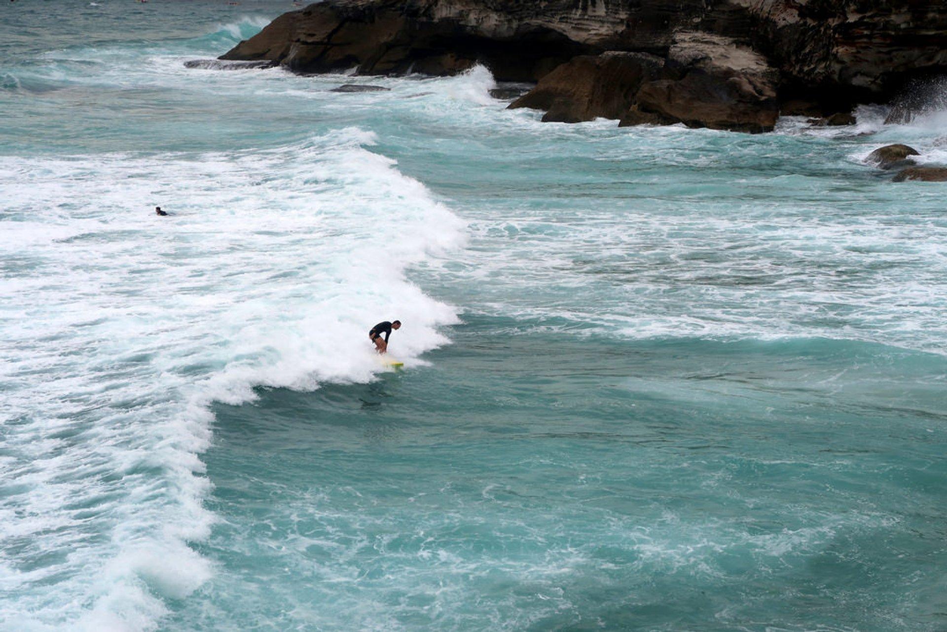 Surfing near Bronte Beach 2020