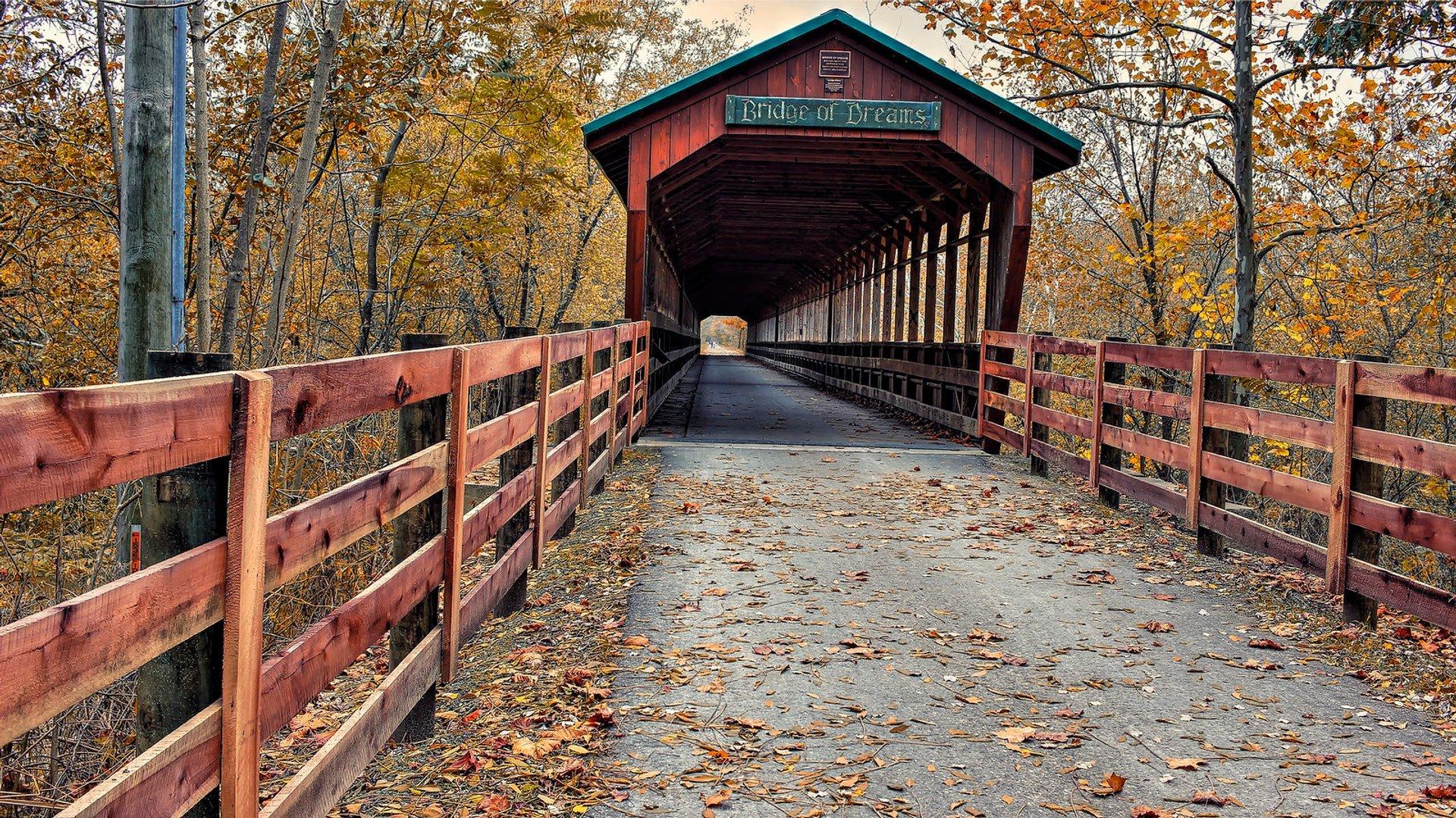 The Bridge of Dreams near Danville, Ohio 2020