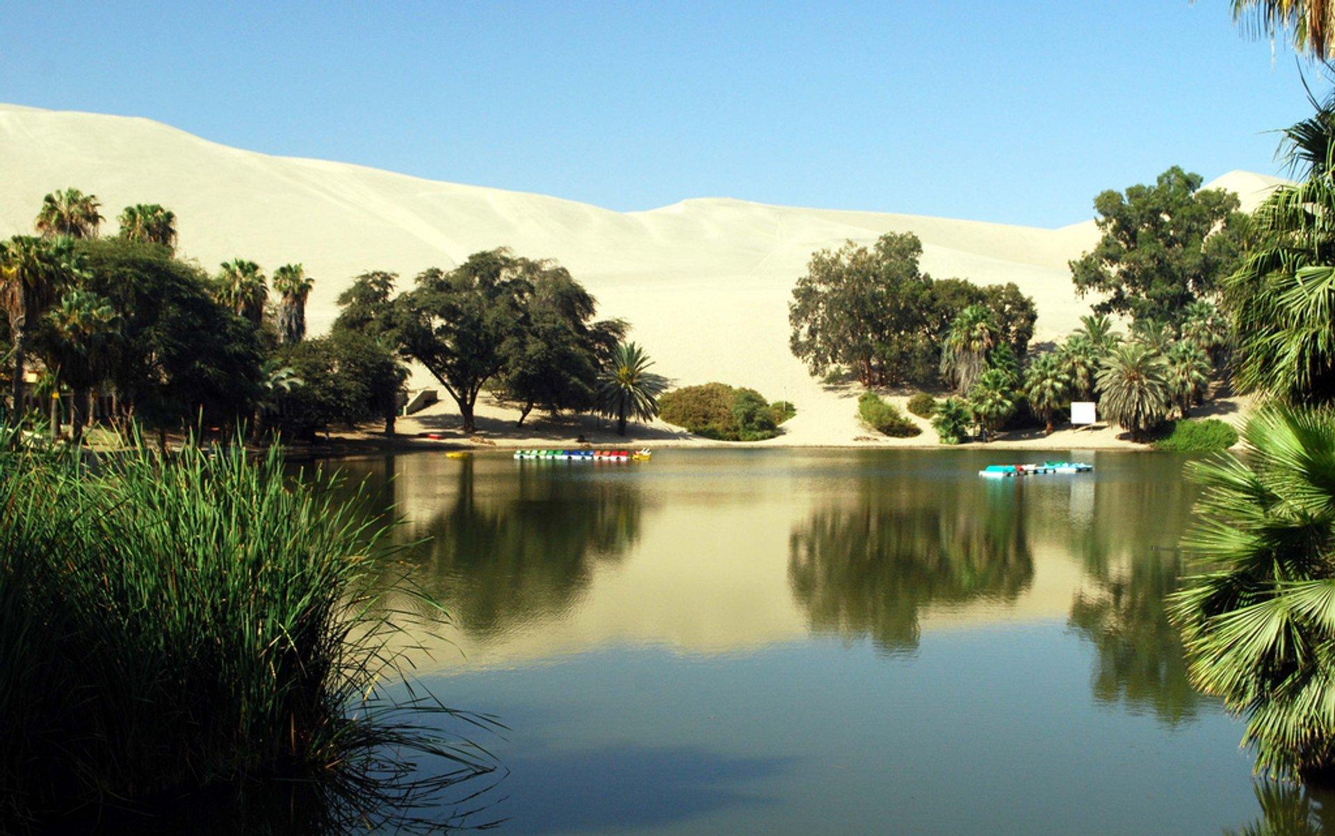 Huacachina Oasis in Peru - Best Season 2020