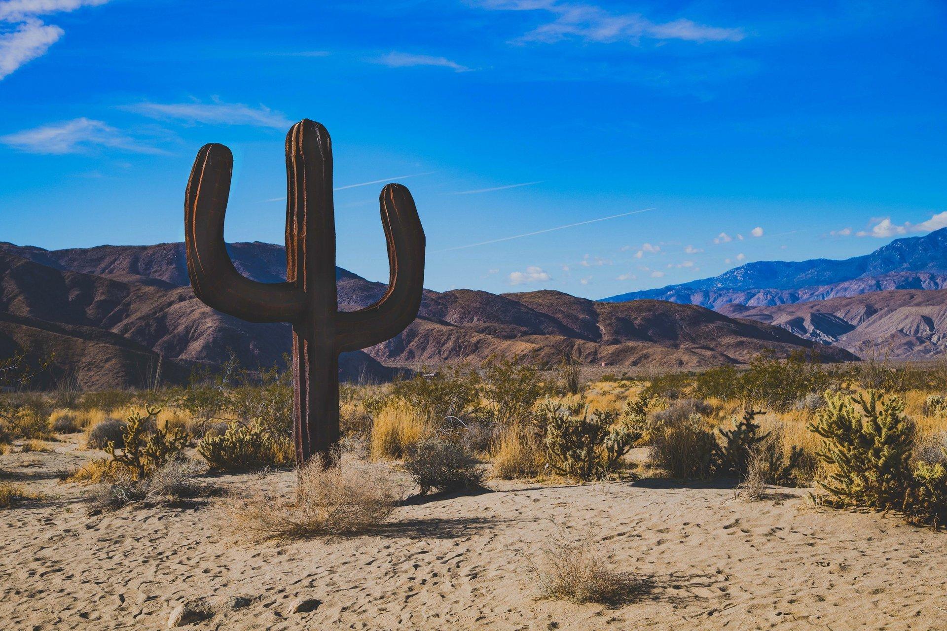 Cactus sculpture 2020