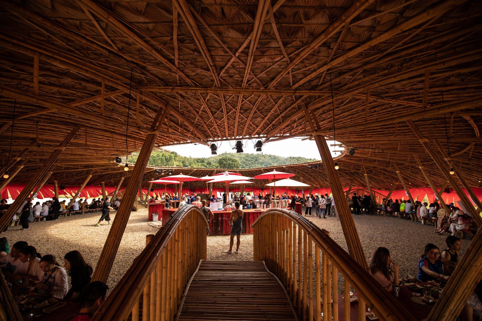 Best time to see Wonderfruit Festival