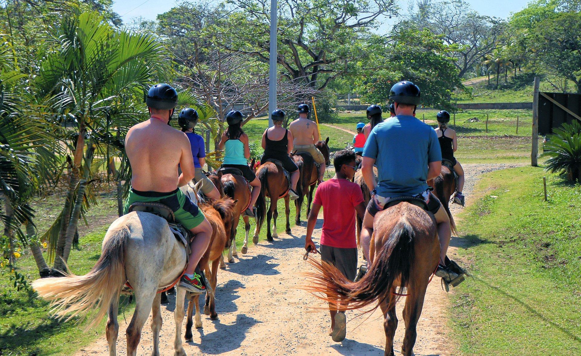 Best time for Horseback Riding on Roatán in Honduras 2019