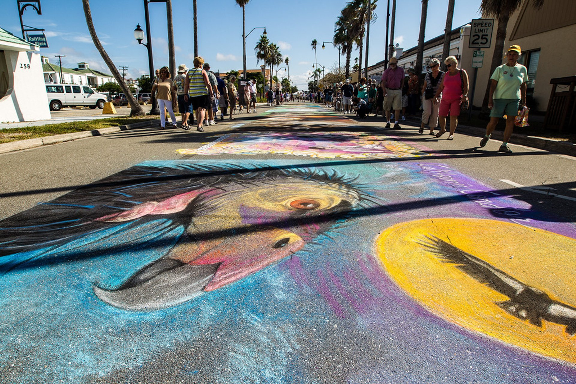 Chalk Festival in Venice in Florida - Best Season 2019